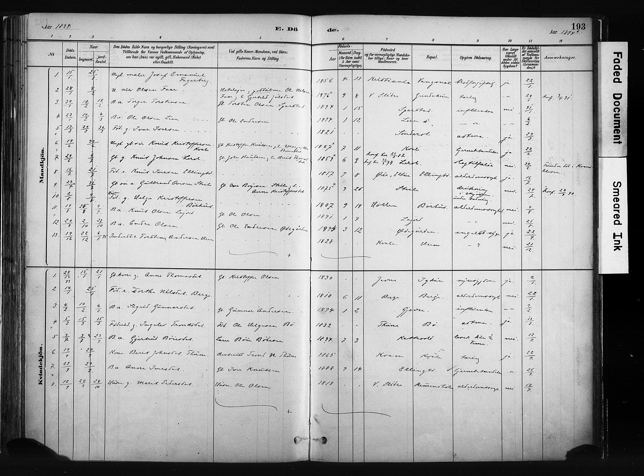 SAH, Vang prestekontor, Valdres, Ministerialbok nr. 8, 1882-1910, s. 193