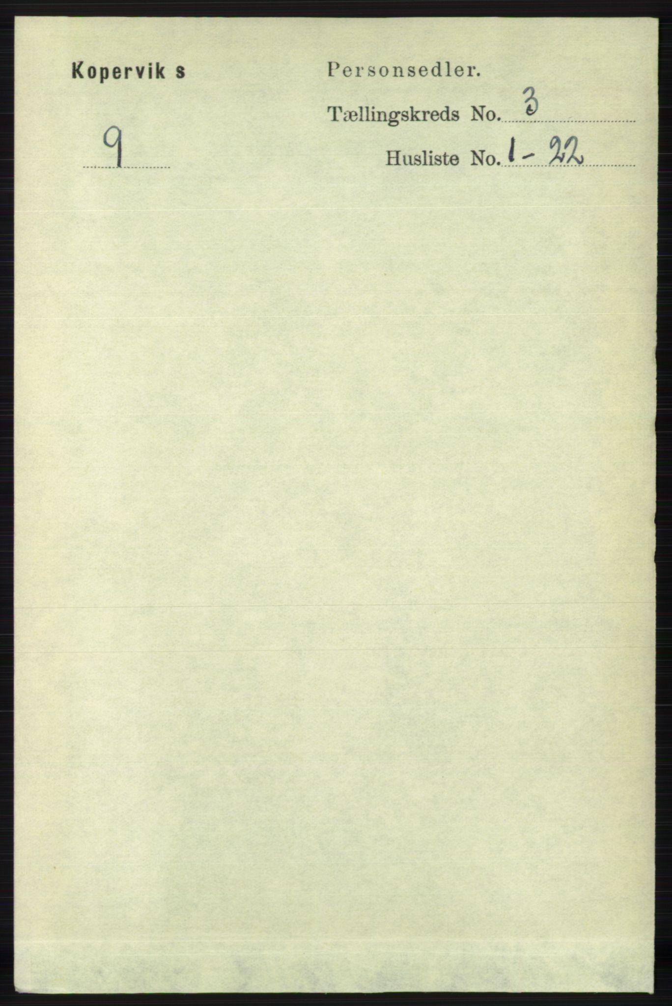 RA, Folketelling 1891 for 1147 Avaldsnes herred, 1891, s. 1014