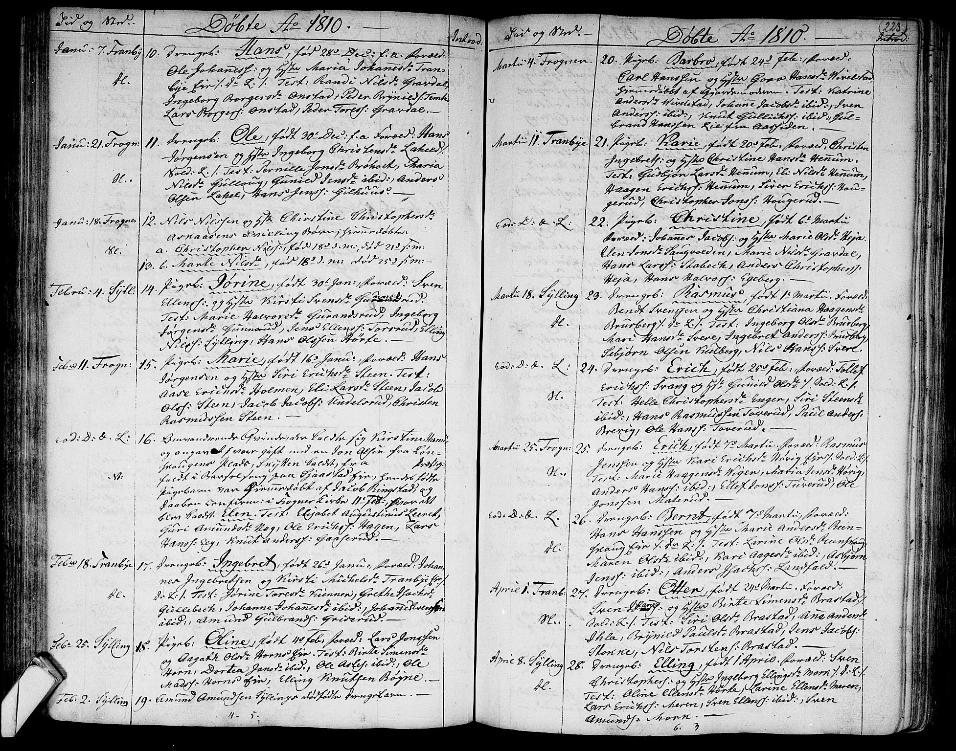 SAKO, Lier kirkebøker, F/Fa/L0007: Ministerialbok nr. I 7, 1794-1813, s. 223