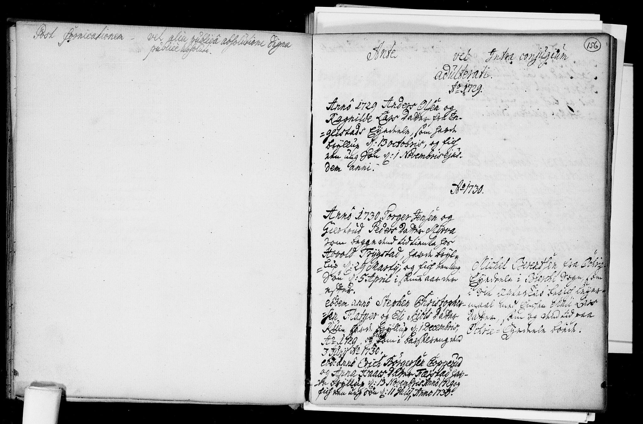 SAO, Nannestad prestekontor Kirkebøker, F/Fa/L0005: Ministerialbok nr. I 5, 1729-1738, s. 156