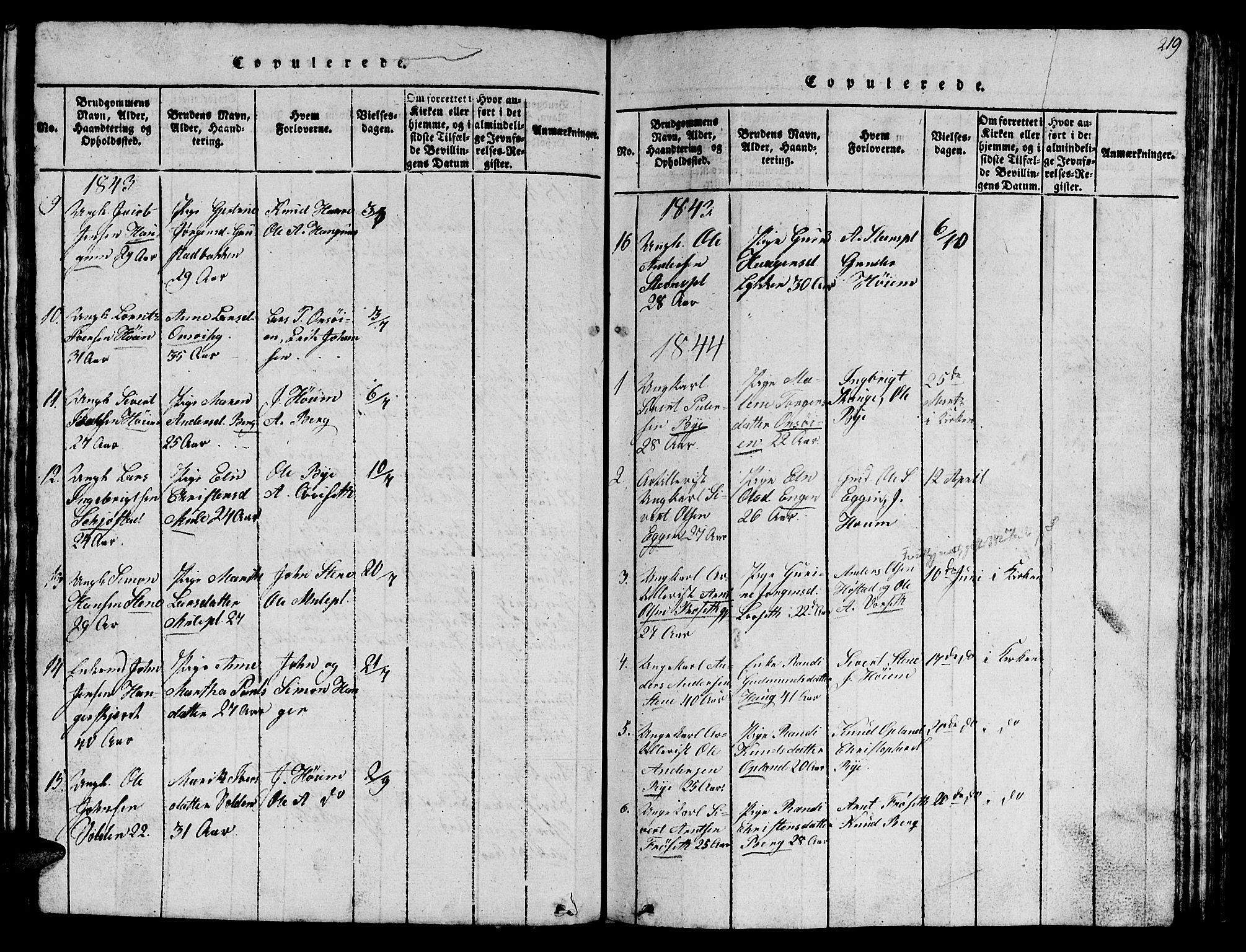 SAT, Ministerialprotokoller, klokkerbøker og fødselsregistre - Sør-Trøndelag, 612/L0385: Klokkerbok nr. 612C01, 1816-1845, s. 219