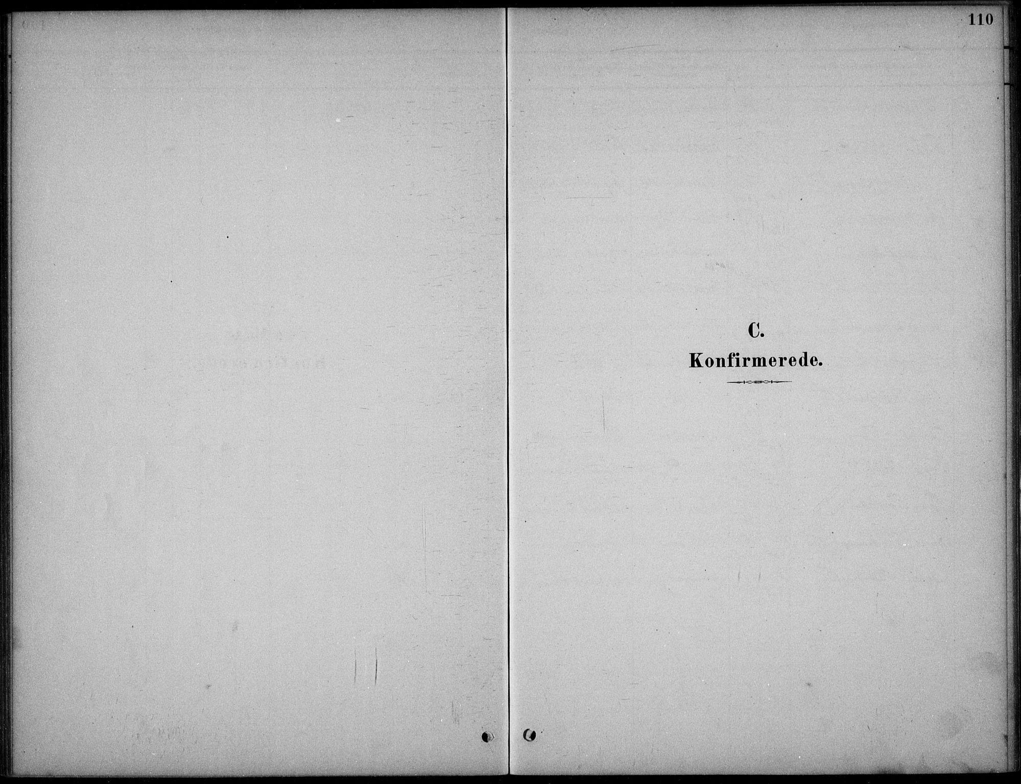 SAKO, Hjartdal kirkebøker, F/Fc/L0002: Ministerialbok nr. III 2, 1880-1936, s. 110