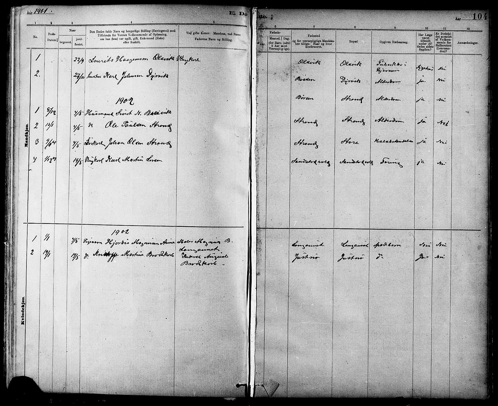 SAT, Ministerialprotokoller, klokkerbøker og fødselsregistre - Sør-Trøndelag, 639/L0573: Klokkerbok nr. 639C01, 1890-1905, s. 104