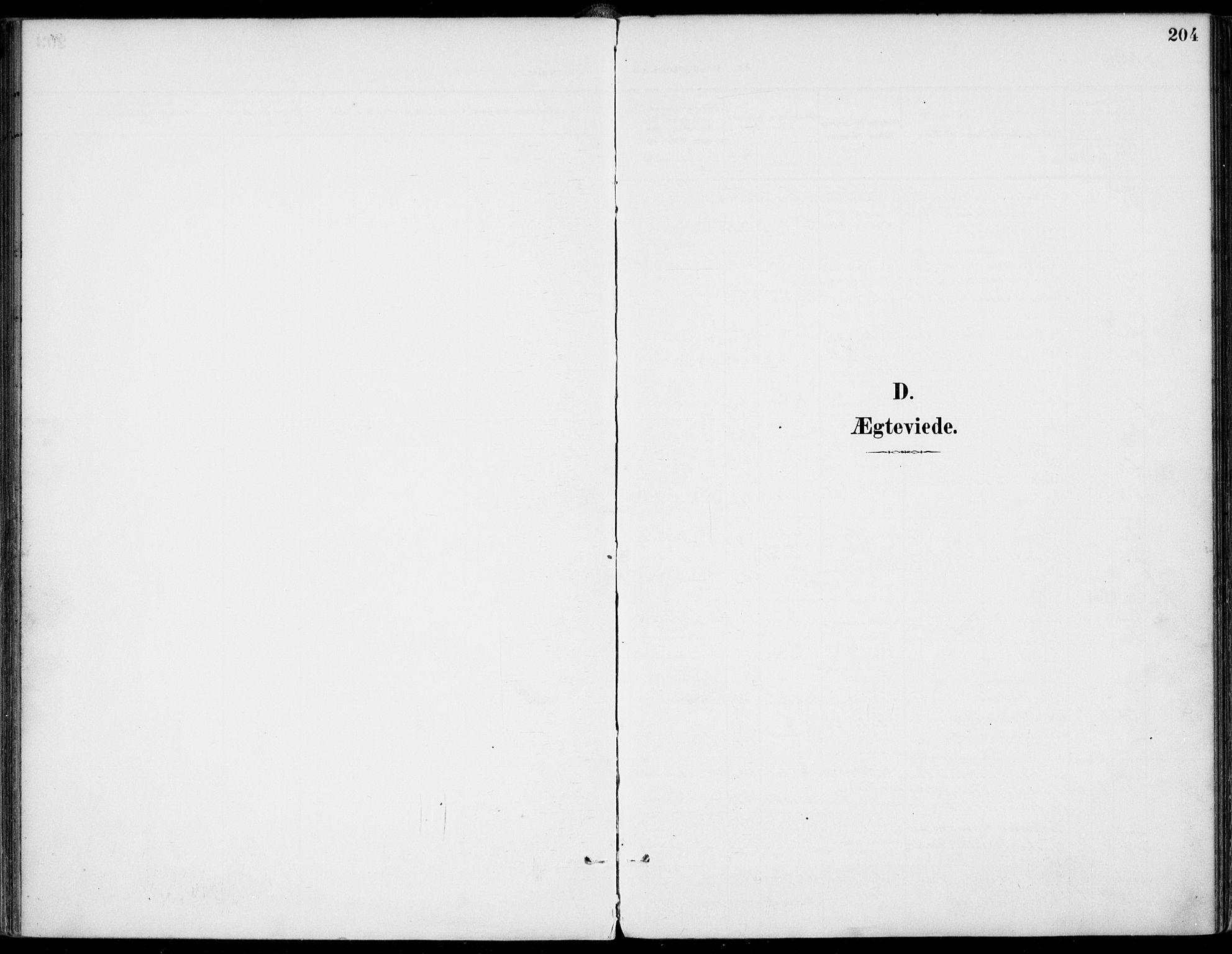 SAKO, Gjerpen kirkebøker, F/Fa/L0011: Ministerialbok nr. 11, 1896-1904, s. 204