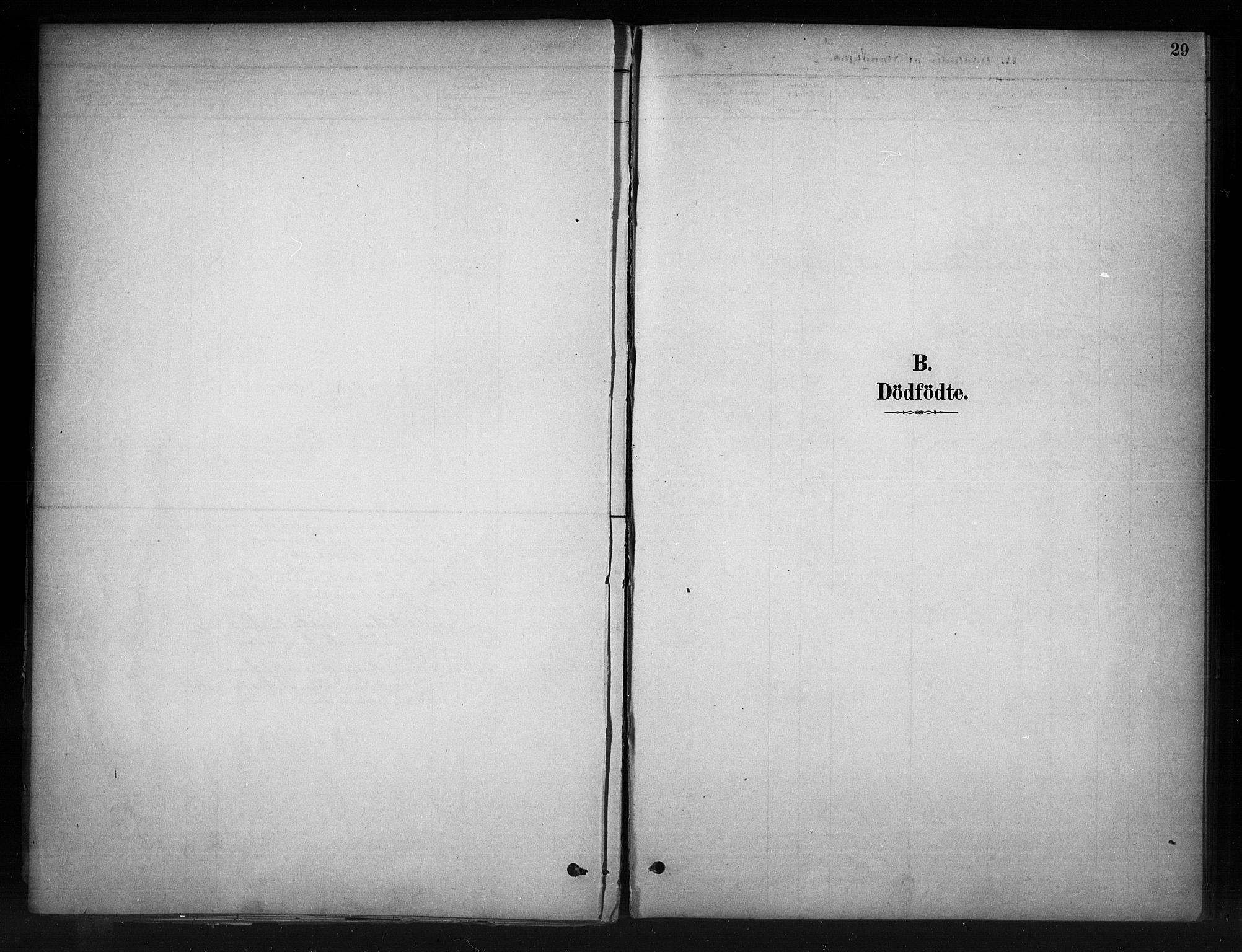 SAH, Nord-Aurdal prestekontor, Ministerialbok nr. 11, 1883-1896, s. 29