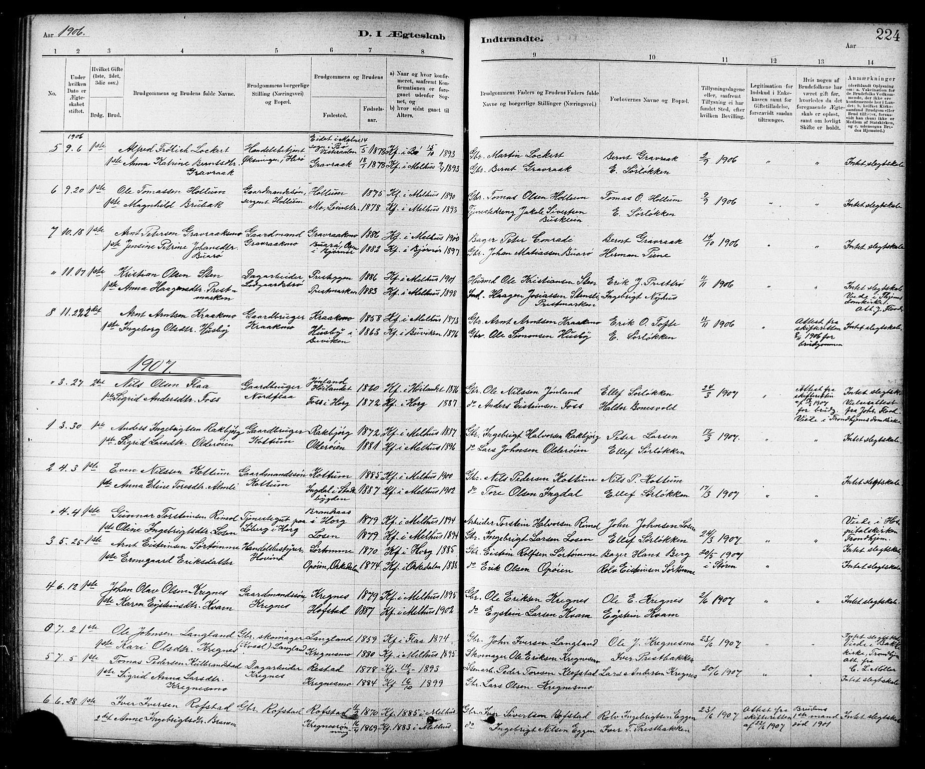 SAT, Ministerialprotokoller, klokkerbøker og fødselsregistre - Sør-Trøndelag, 691/L1094: Klokkerbok nr. 691C05, 1879-1911, s. 224