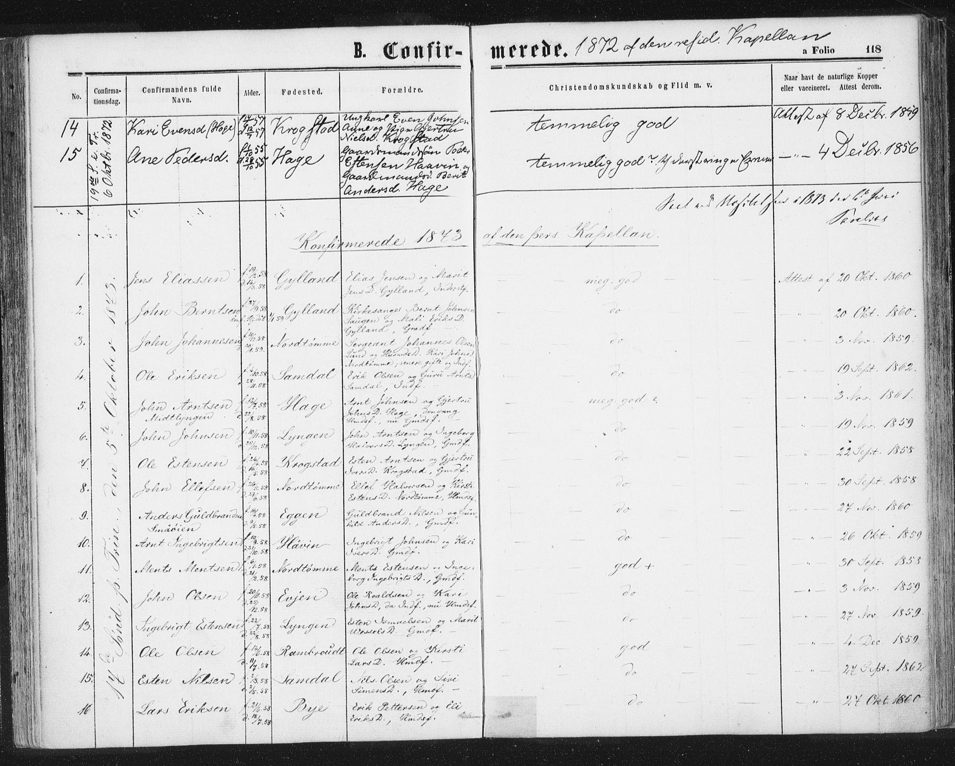 SAT, Ministerialprotokoller, klokkerbøker og fødselsregistre - Sør-Trøndelag, 692/L1104: Ministerialbok nr. 692A04, 1862-1878, s. 118
