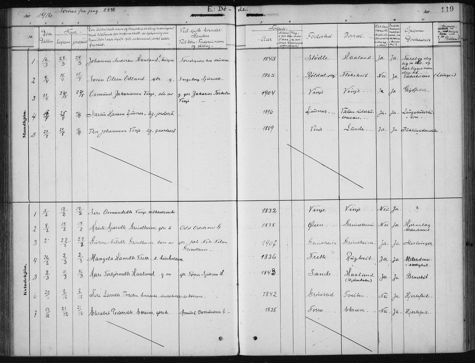 SAB, Etne sokneprestembete, H/Haa: Ministerialbok nr. D  1, 1879-1919, s. 119