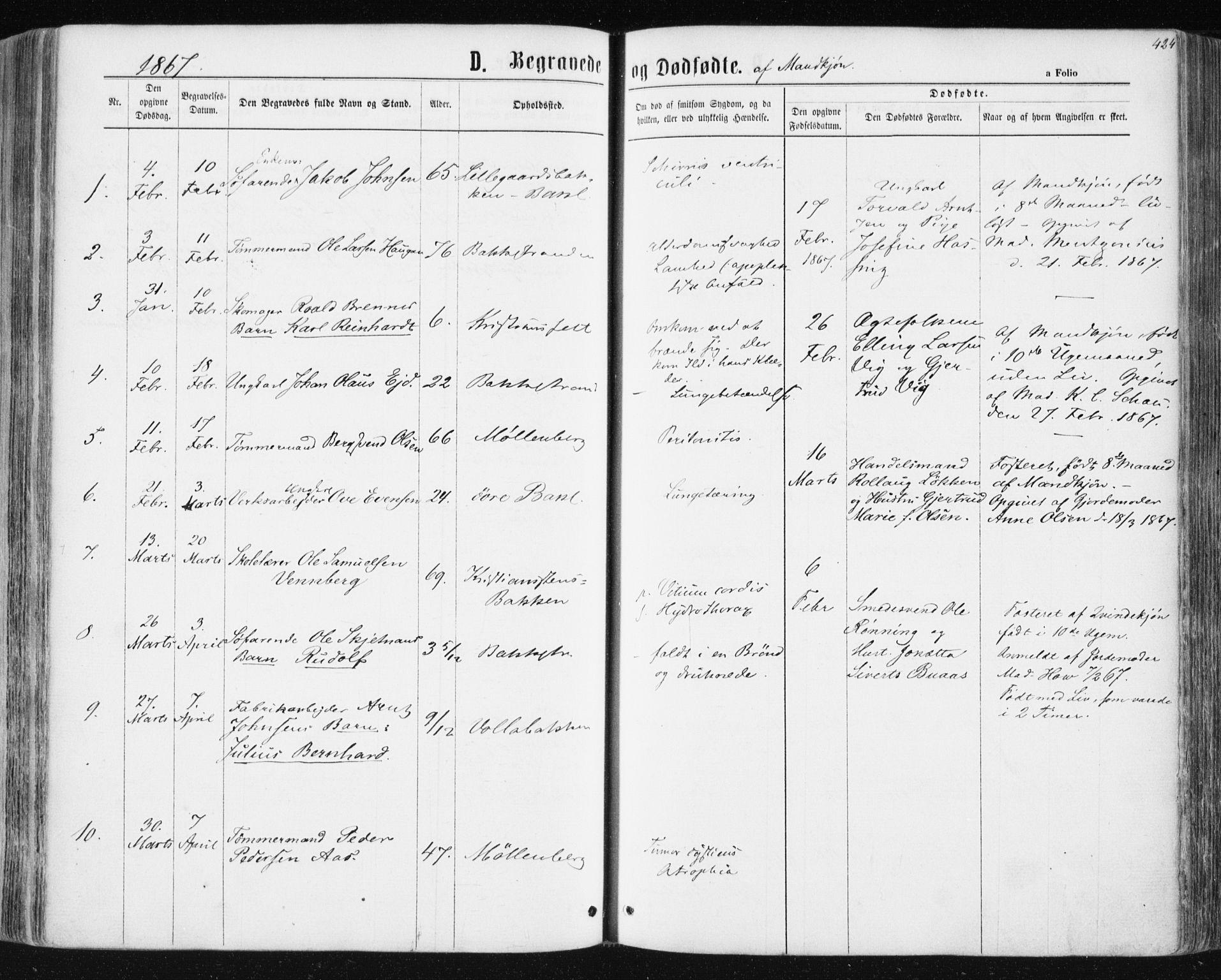SAT, Ministerialprotokoller, klokkerbøker og fødselsregistre - Sør-Trøndelag, 604/L0186: Ministerialbok nr. 604A07, 1866-1877, s. 424