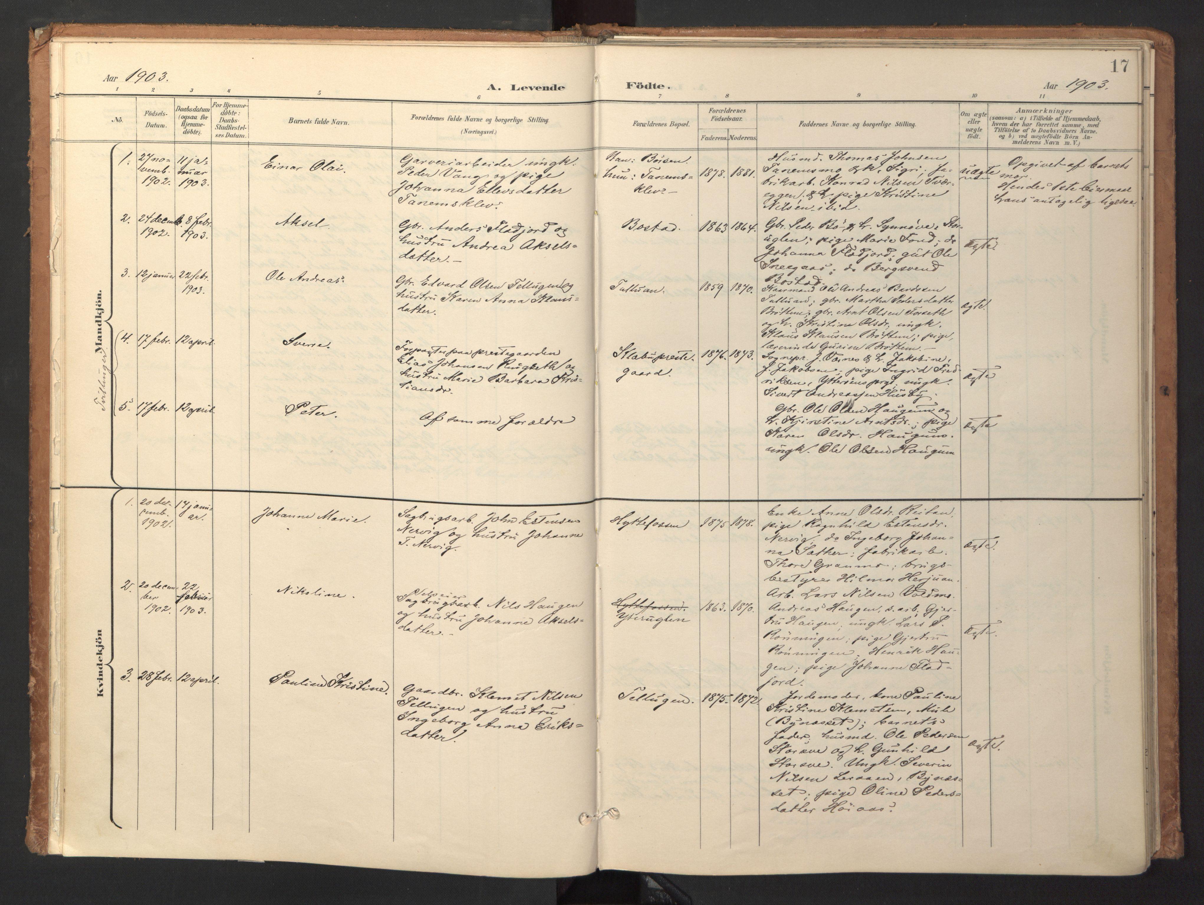 SAT, Ministerialprotokoller, klokkerbøker og fødselsregistre - Sør-Trøndelag, 618/L0448: Ministerialbok nr. 618A11, 1898-1916, s. 17