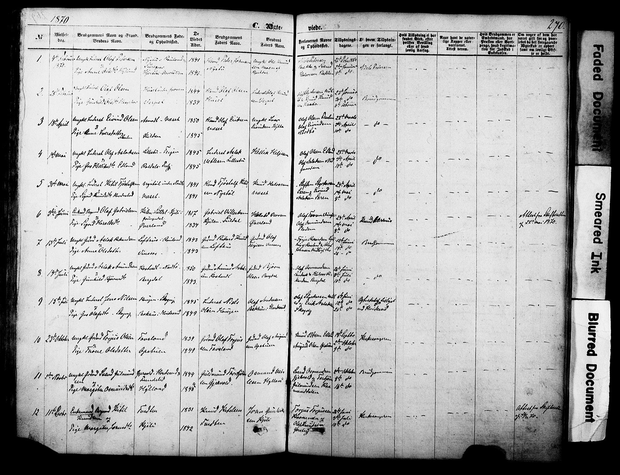 SAKO, Vinje kirkebøker, F/Fa/L0005: Ministerialbok nr. I 5, 1870-1886, s. 270