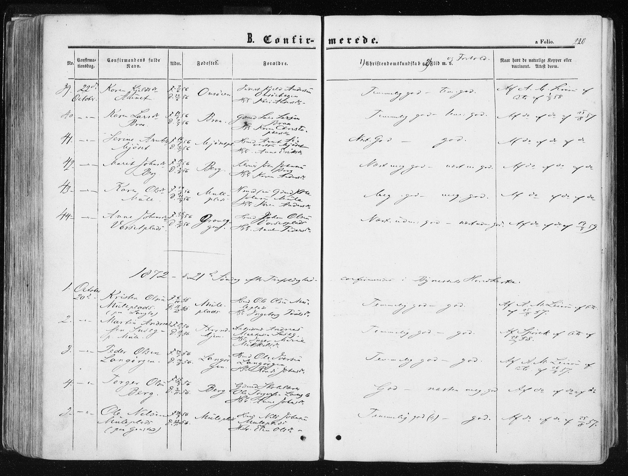 SAT, Ministerialprotokoller, klokkerbøker og fødselsregistre - Sør-Trøndelag, 612/L0377: Ministerialbok nr. 612A09, 1859-1877, s. 220