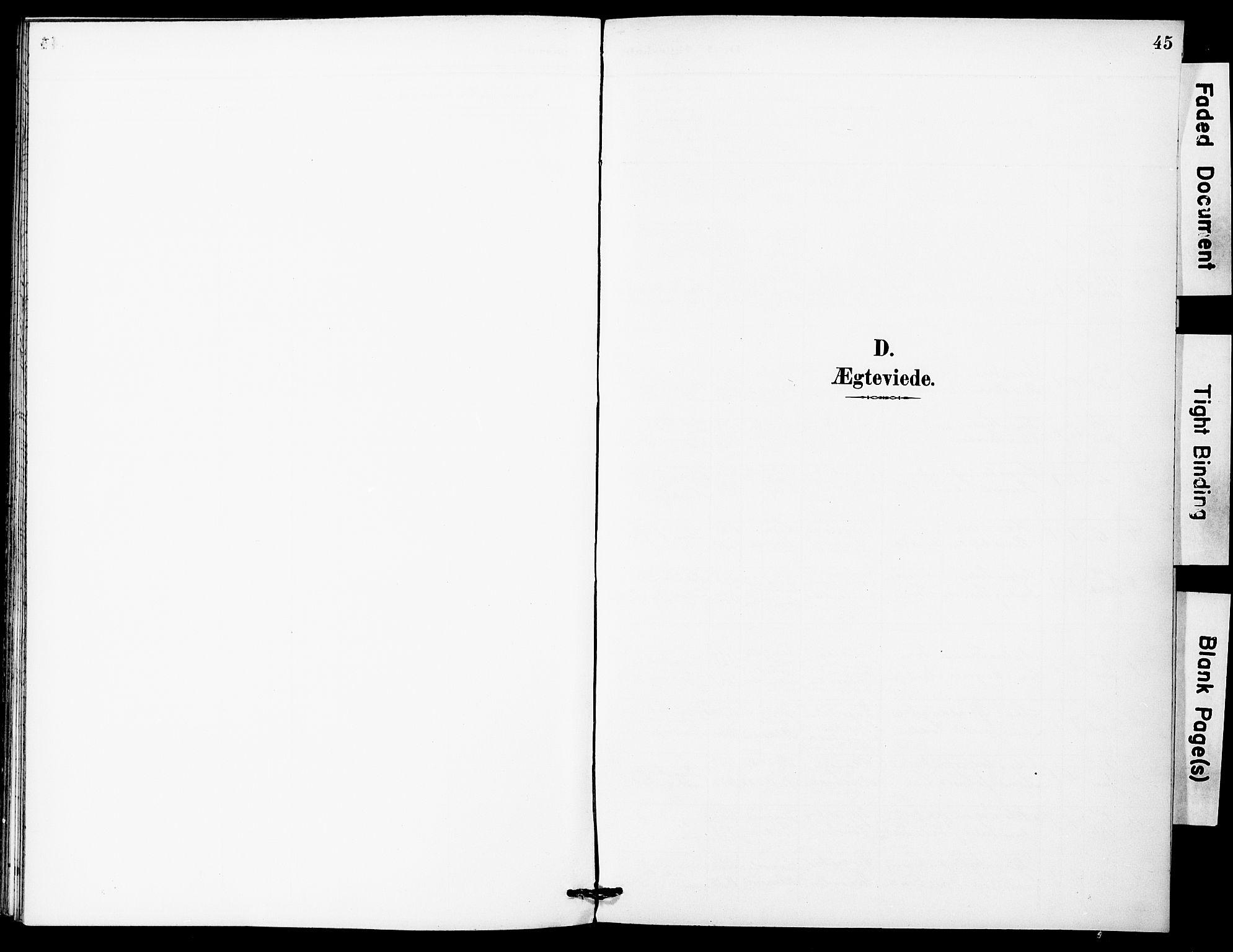 SAT, Ministerialprotokoller, klokkerbøker og fødselsregistre - Sør-Trøndelag, 683/L0948: Ministerialbok nr. 683A01, 1891-1902, s. 45