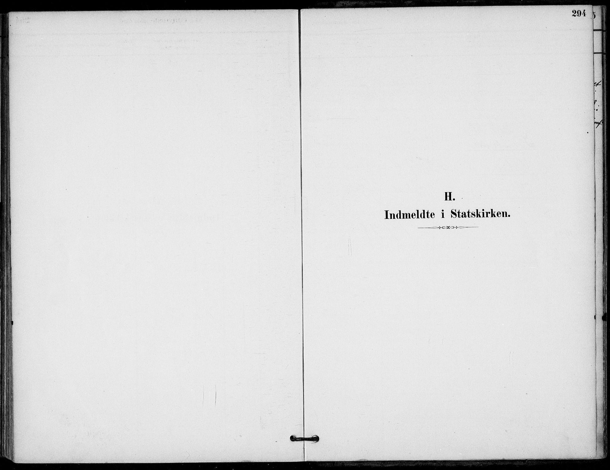 SAKO, Hjartdal kirkebøker, F/Fb/L0002: Ministerialbok nr. II 2, 1880-1932, s. 294