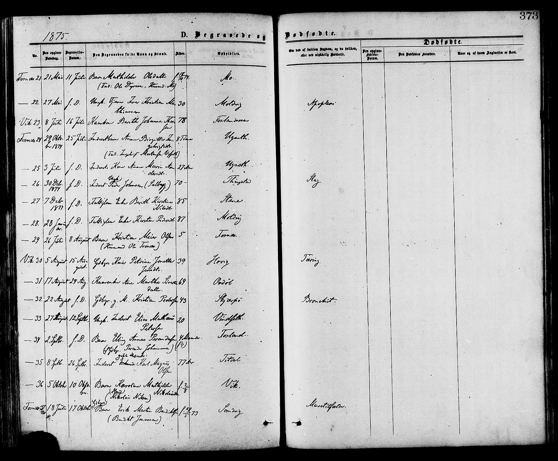 SAT, Ministerialprotokoller, klokkerbøker og fødselsregistre - Nord-Trøndelag, 773/L0616: Ministerialbok nr. 773A07, 1870-1887, s. 373