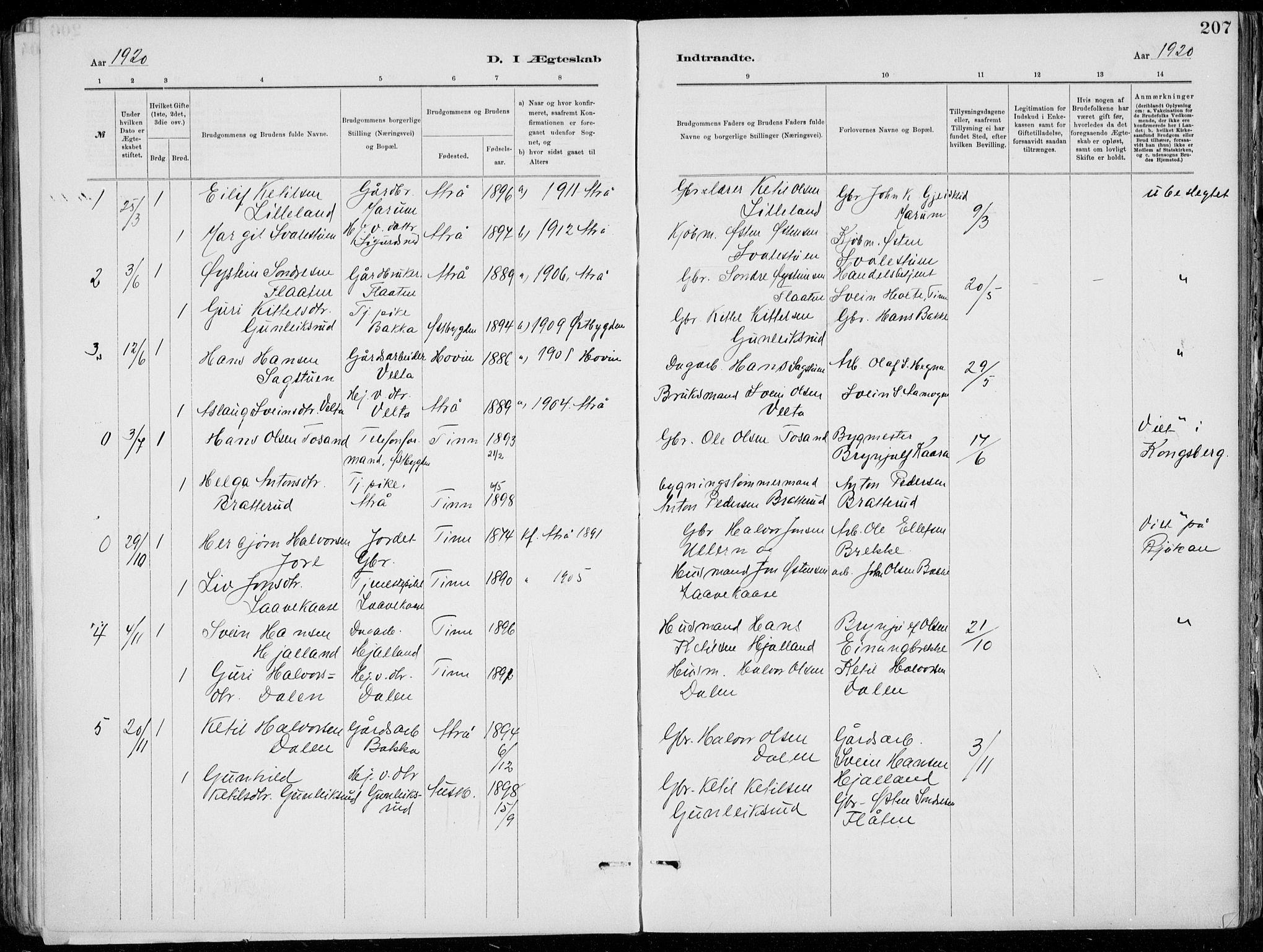 SAKO, Tinn kirkebøker, F/Fa/L0007: Ministerialbok nr. I 7, 1878-1922, s. 207