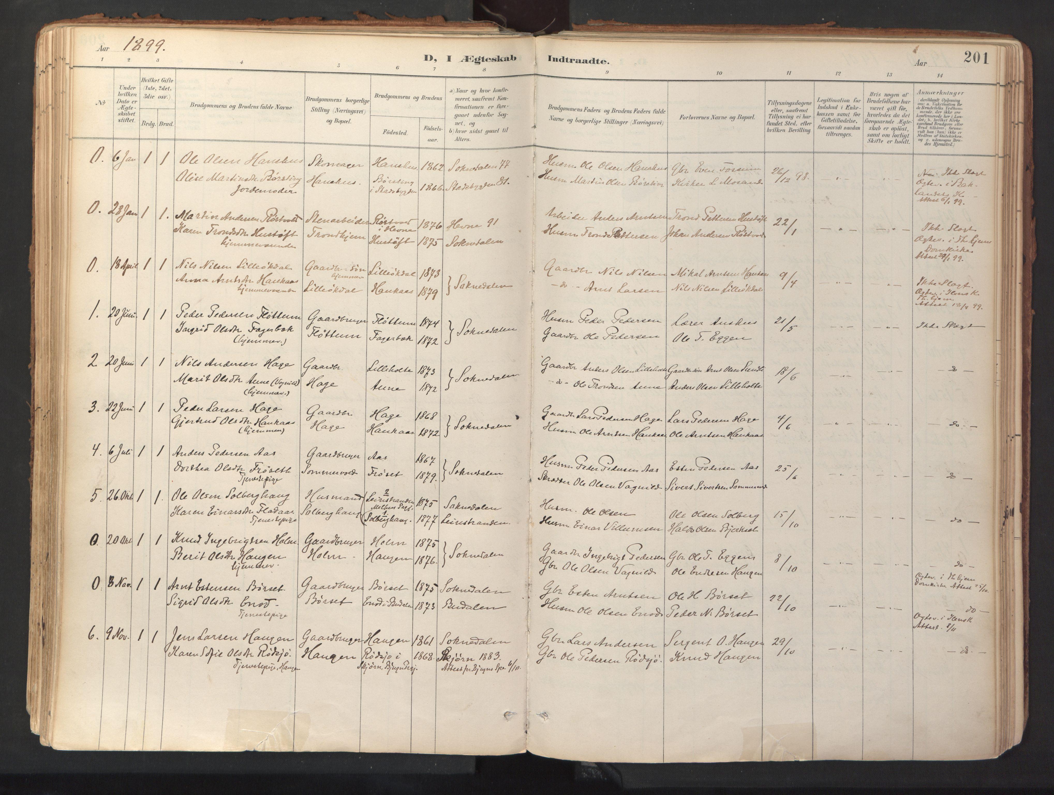 SAT, Ministerialprotokoller, klokkerbøker og fødselsregistre - Sør-Trøndelag, 689/L1041: Ministerialbok nr. 689A06, 1891-1923, s. 201