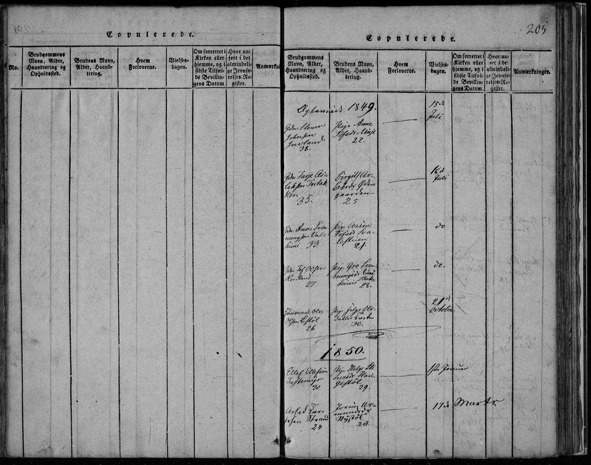 SAKO, Rauland kirkebøker, F/Fa/L0001: Ministerialbok nr. 1, 1814-1859, s. 205