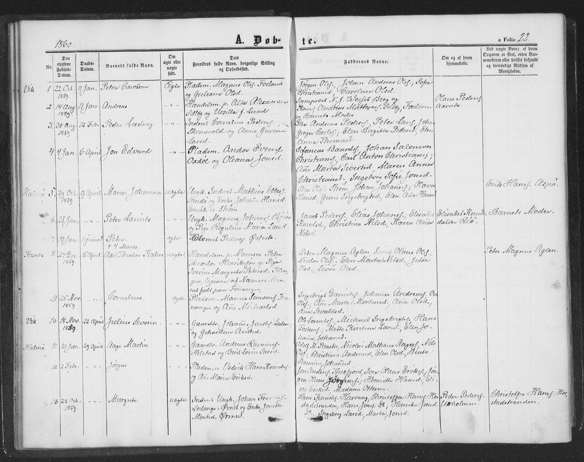 SAT, Ministerialprotokoller, klokkerbøker og fødselsregistre - Nord-Trøndelag, 773/L0615: Ministerialbok nr. 773A06, 1857-1870, s. 22