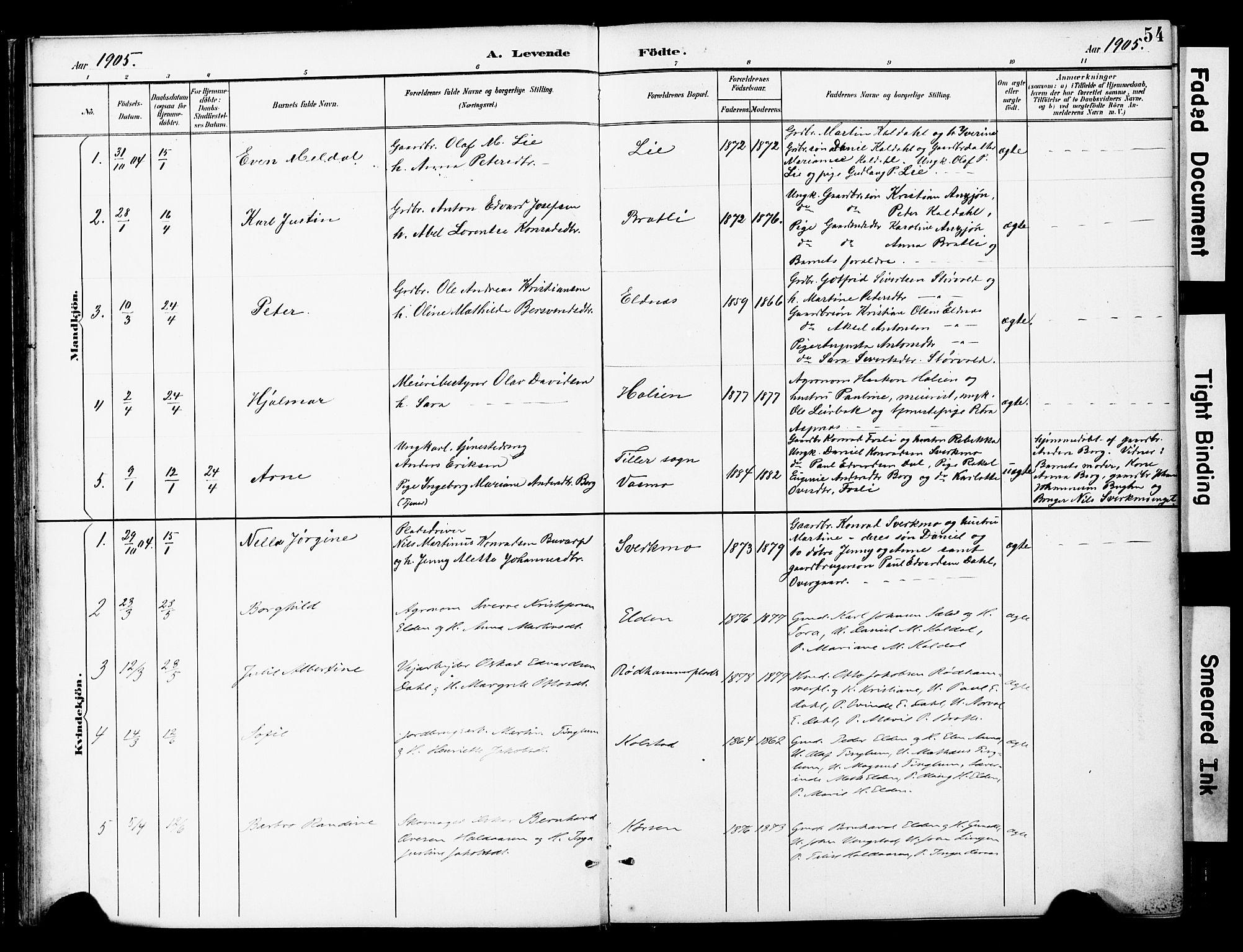 SAT, Ministerialprotokoller, klokkerbøker og fødselsregistre - Nord-Trøndelag, 742/L0409: Ministerialbok nr. 742A02, 1891-1905, s. 54