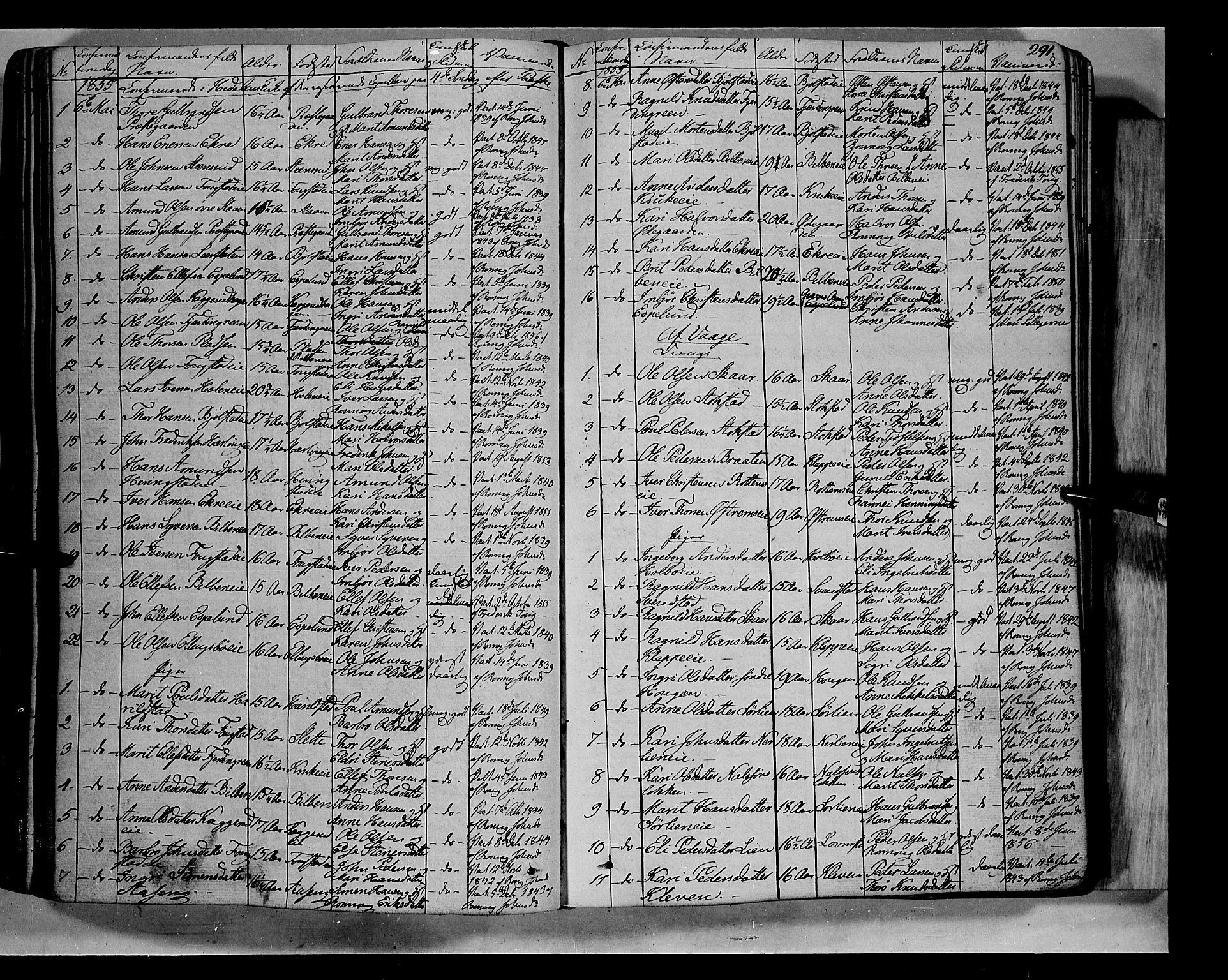 SAH, Vågå prestekontor, Ministerialbok nr. 5 /1, 1842-1856, s. 291