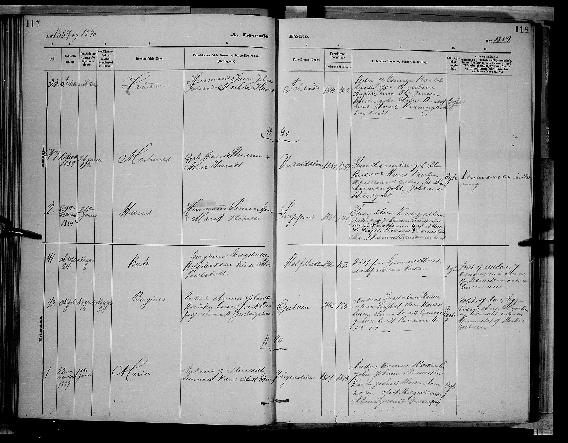 SAH, Sør-Fron prestekontor, H/Ha/Hab/L0003: Klokkerbok nr. 3, 1884-1896, s. 117-118
