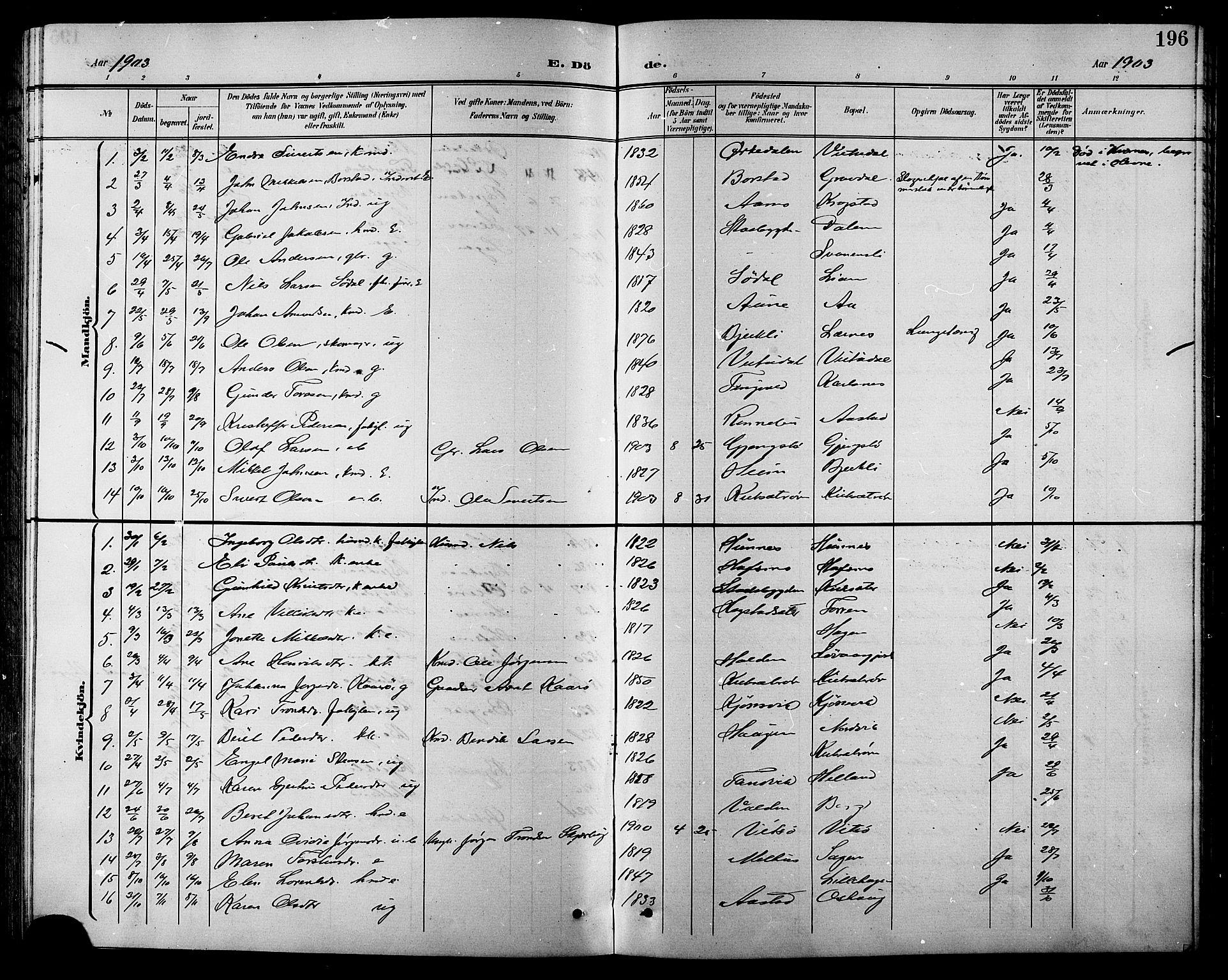 SAT, Ministerialprotokoller, klokkerbøker og fødselsregistre - Sør-Trøndelag, 630/L0505: Klokkerbok nr. 630C03, 1899-1914, s. 196