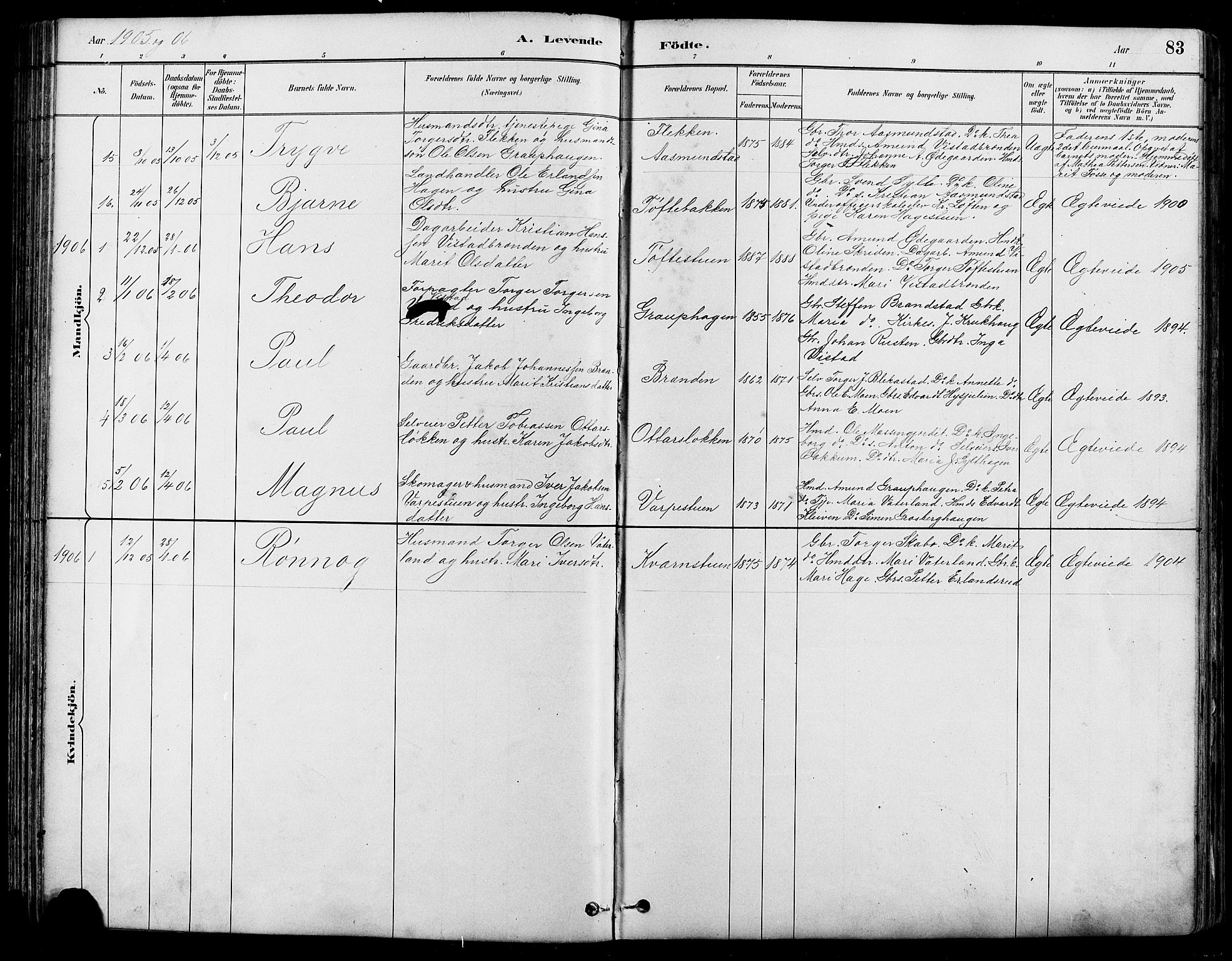 SAH, Nord-Fron prestekontor, Klokkerbok nr. 5, 1884-1914, s. 83