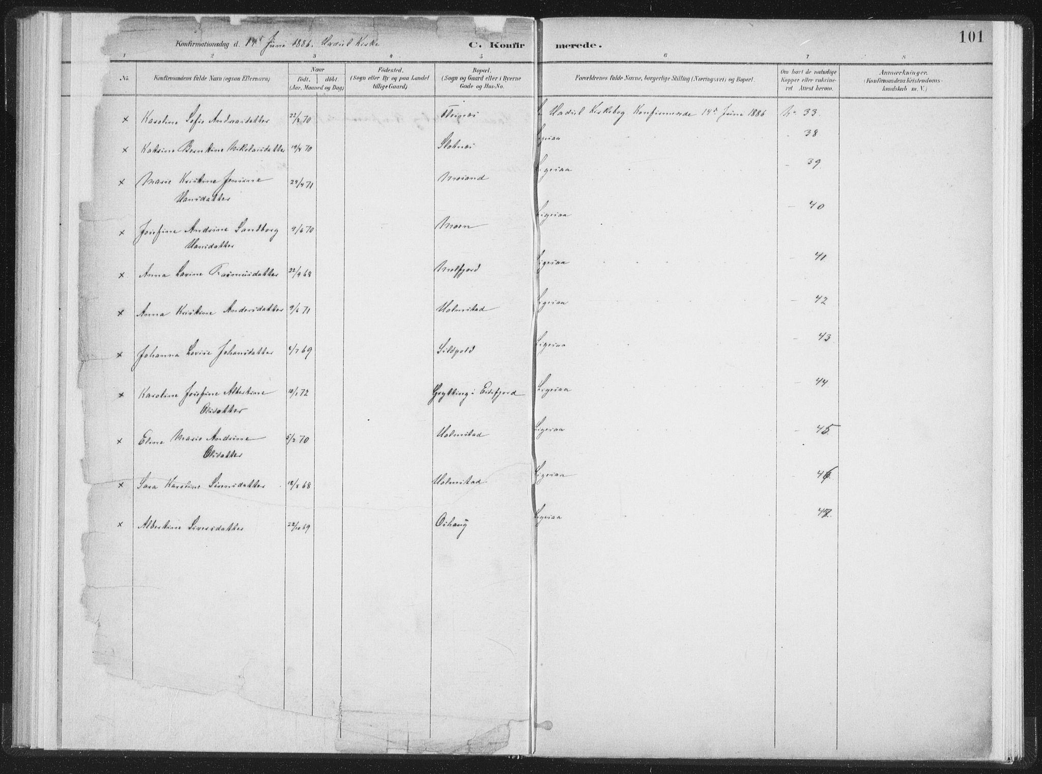 SAT, Ministerialprotokoller, klokkerbøker og fødselsregistre - Nordland, 890/L1286: Ministerialbok nr. 890A01, 1882-1902, s. 101
