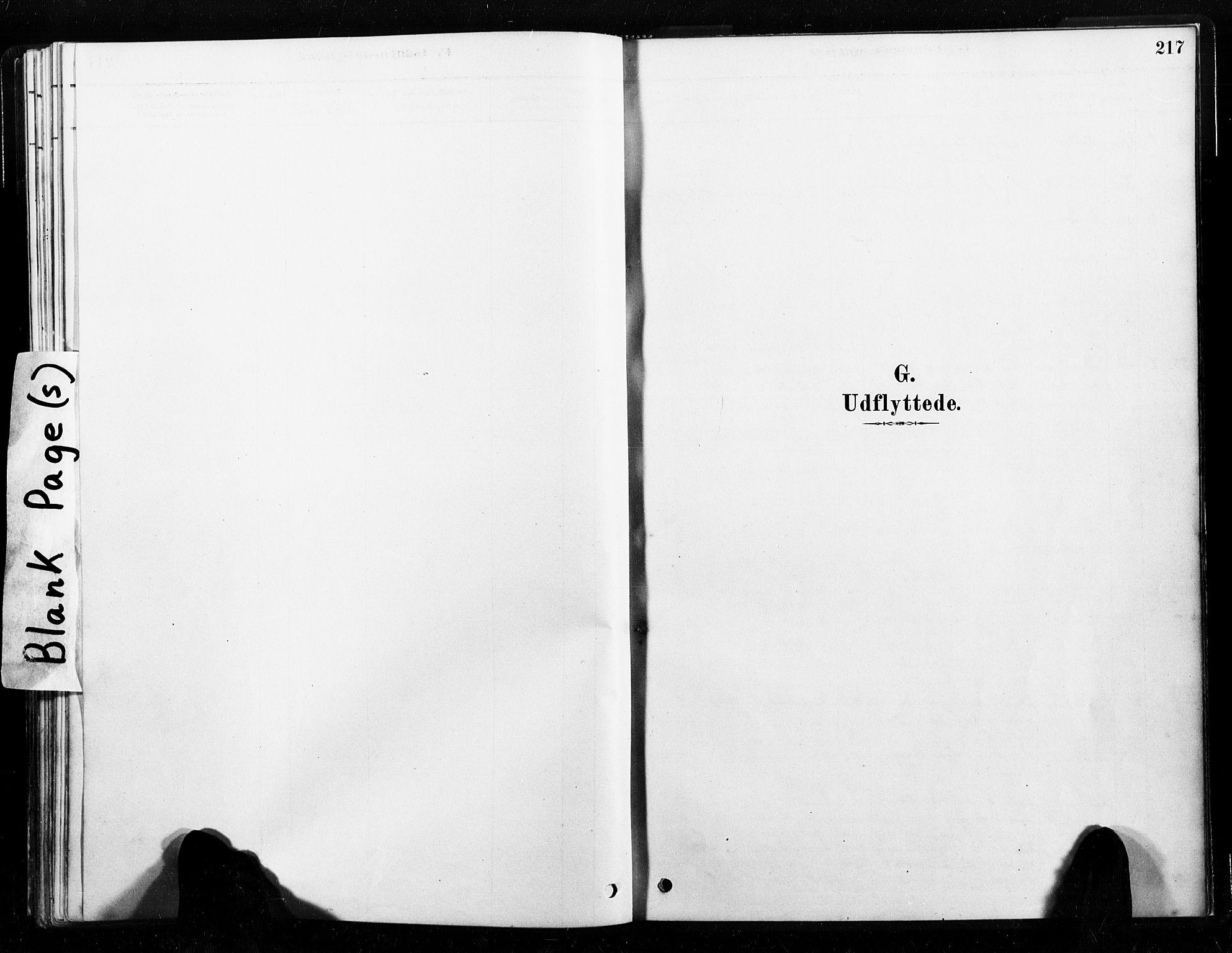 SAT, Ministerialprotokoller, klokkerbøker og fødselsregistre - Nord-Trøndelag, 789/L0705: Ministerialbok nr. 789A01, 1878-1910, s. 217