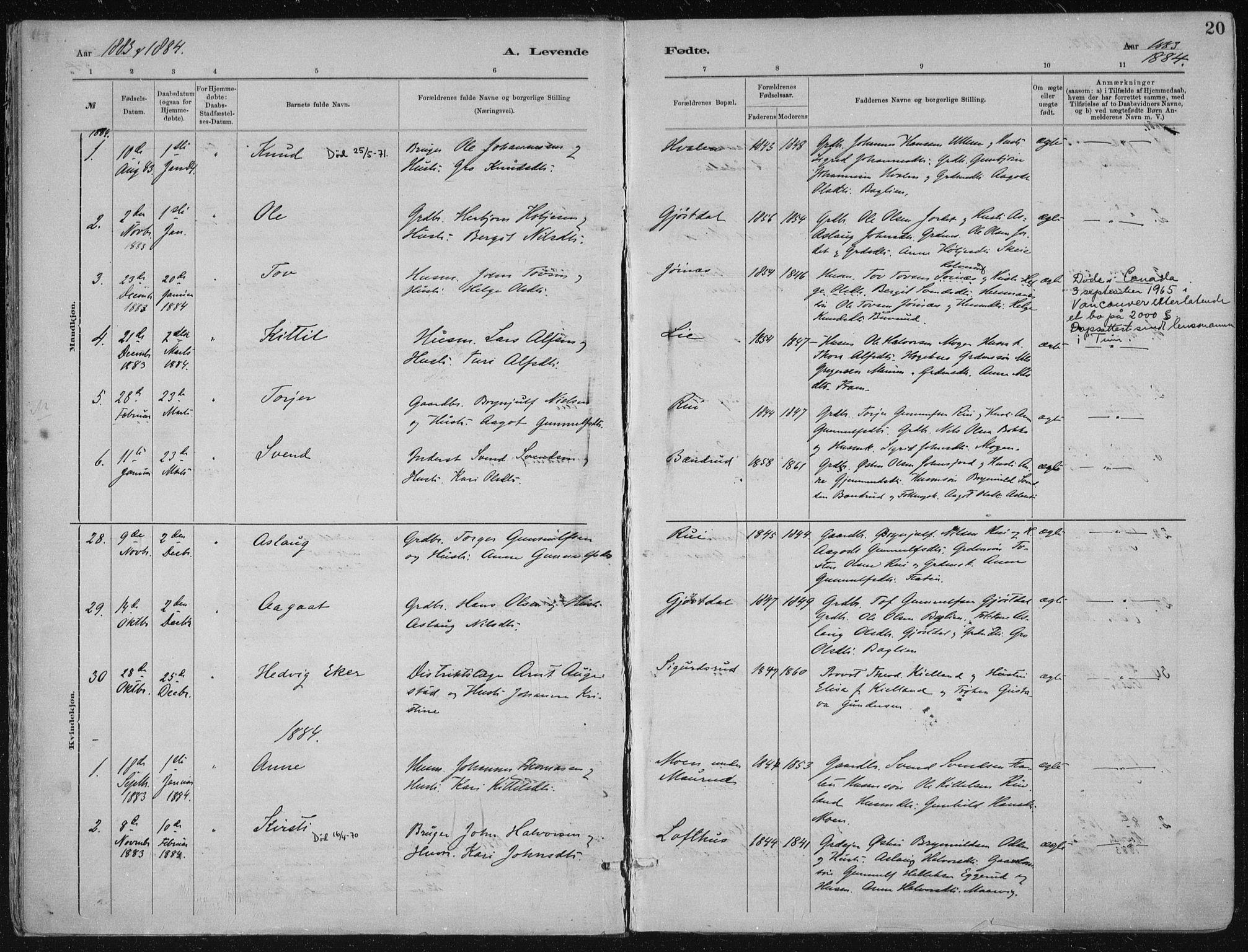 SAKO, Tinn kirkebøker, F/Fa/L0007: Ministerialbok nr. I 7, 1878-1922, s. 20
