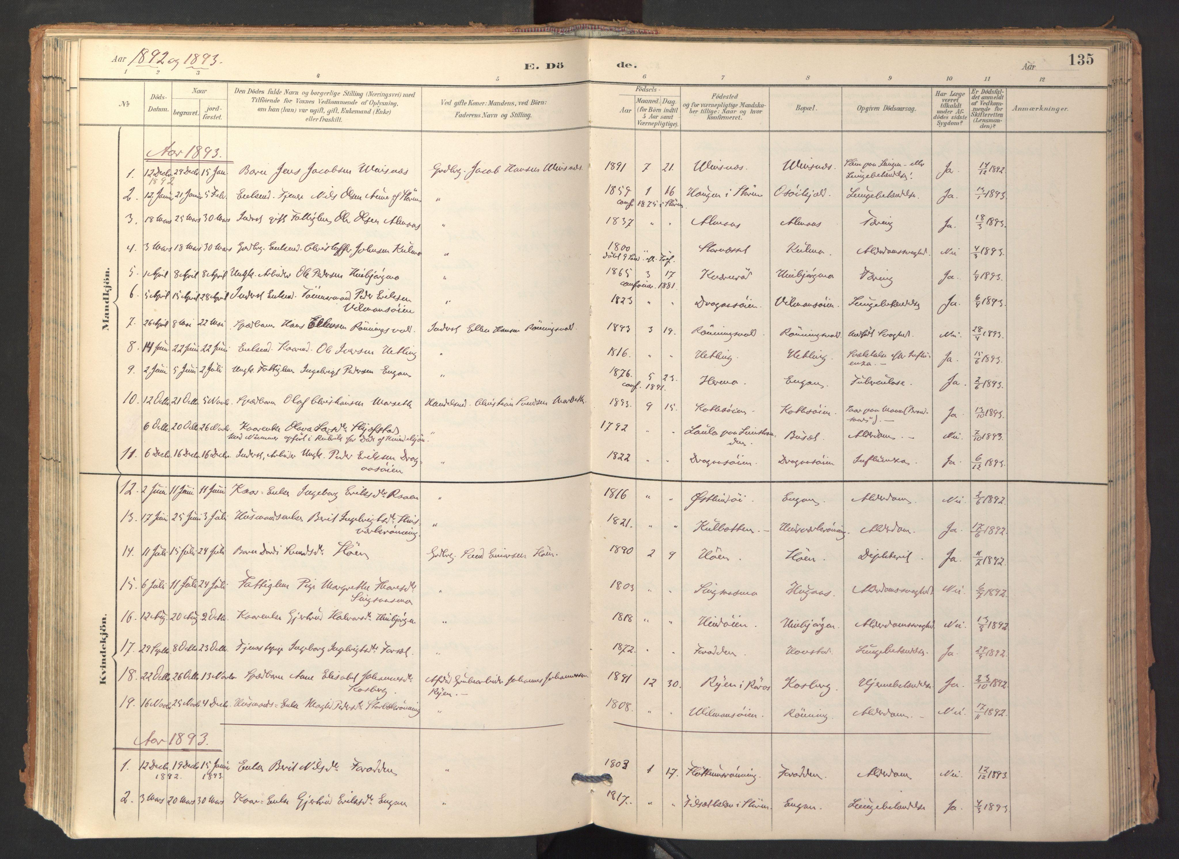 SAT, Ministerialprotokoller, klokkerbøker og fødselsregistre - Sør-Trøndelag, 688/L1025: Ministerialbok nr. 688A02, 1891-1909, s. 135