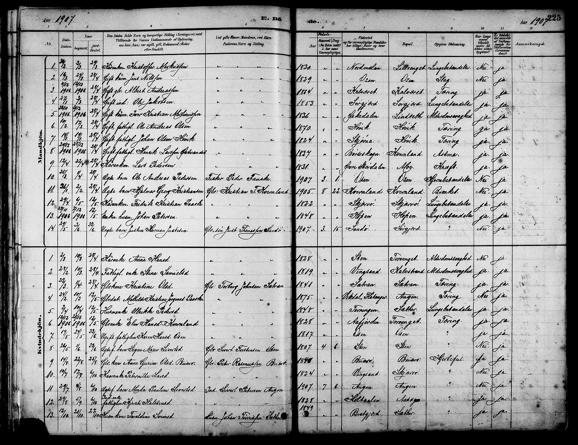 SAT, Ministerialprotokoller, klokkerbøker og fødselsregistre - Sør-Trøndelag, 658/L0726: Klokkerbok nr. 658C02, 1883-1908, s. 225