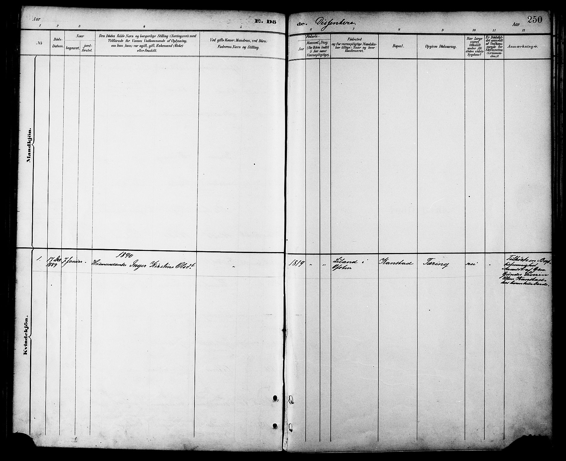 SAT, Ministerialprotokoller, klokkerbøker og fødselsregistre - Nordland, 872/L1035: Ministerialbok nr. 872A10, 1884-1896, s. 250