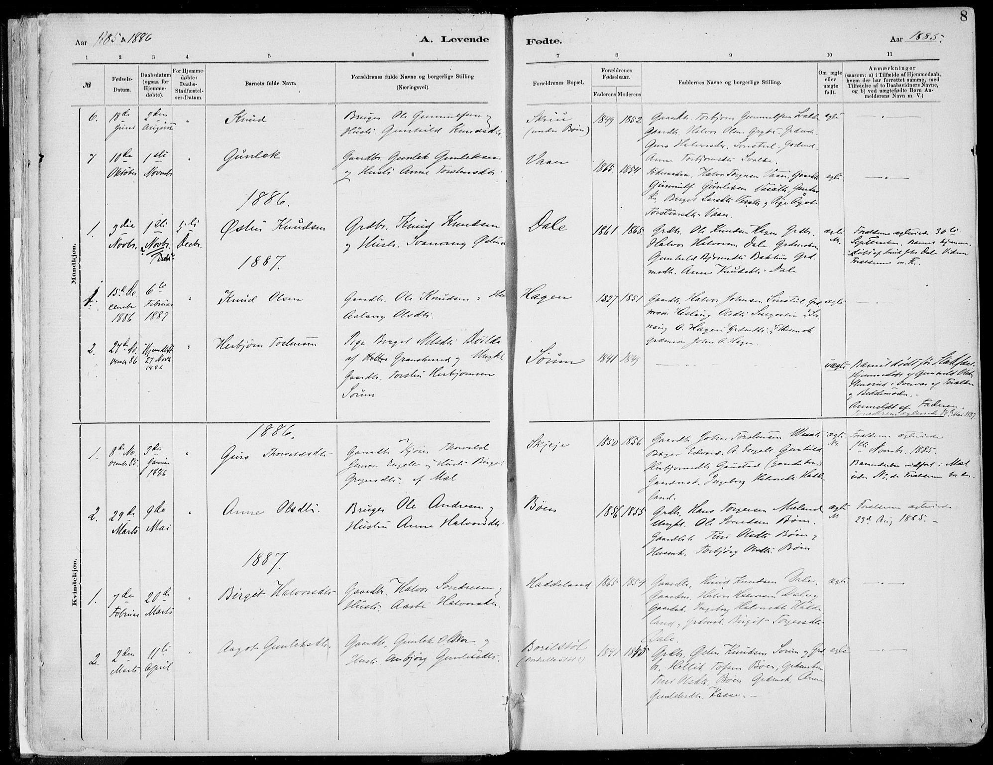 SAKO, Rjukan kirkebøker, F/Fa/L0001: Ministerialbok nr. 1, 1878-1912, s. 8