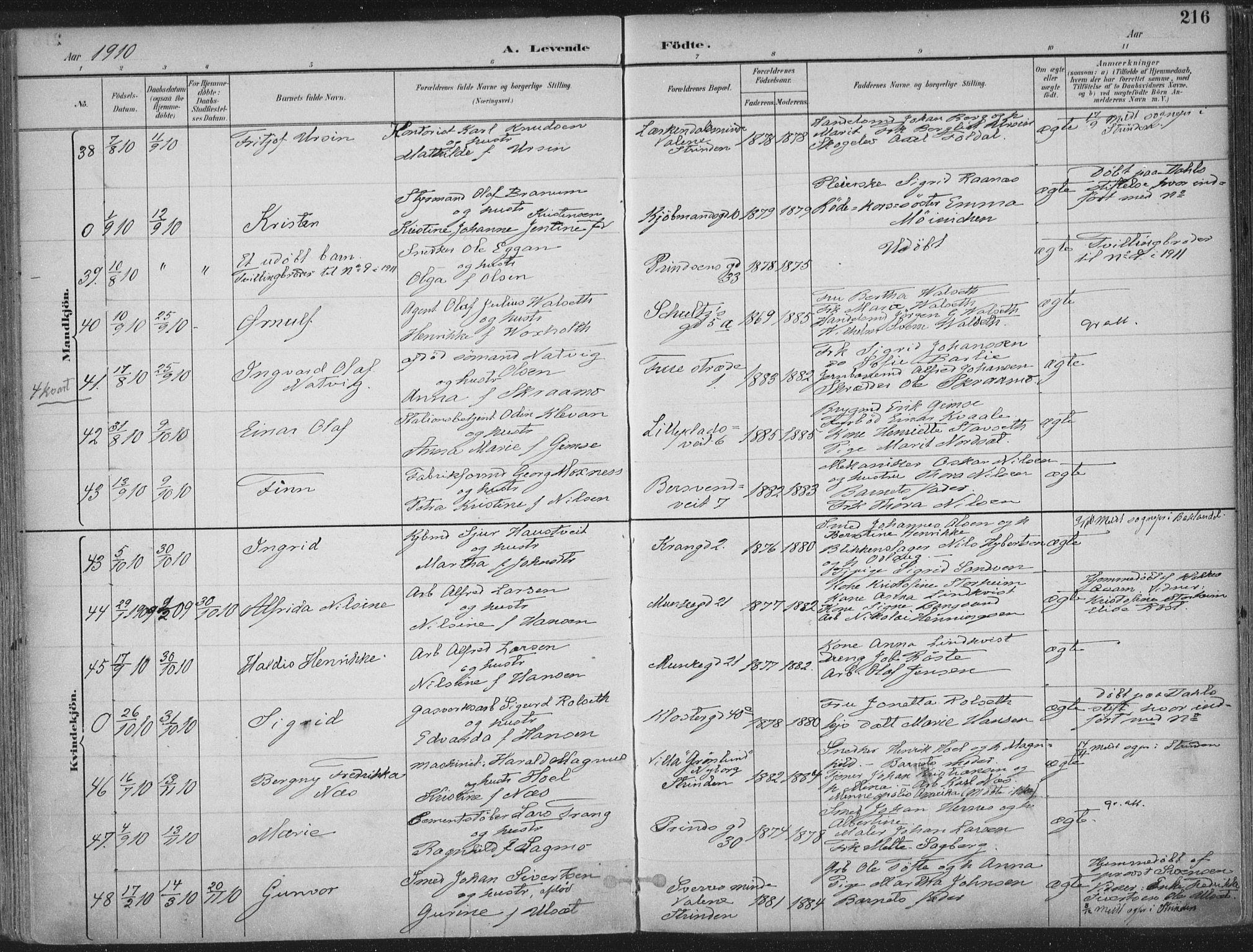 SAT, Ministerialprotokoller, klokkerbøker og fødselsregistre - Sør-Trøndelag, 601/L0062: Ministerialbok nr. 601A30, 1891-1911, s. 216