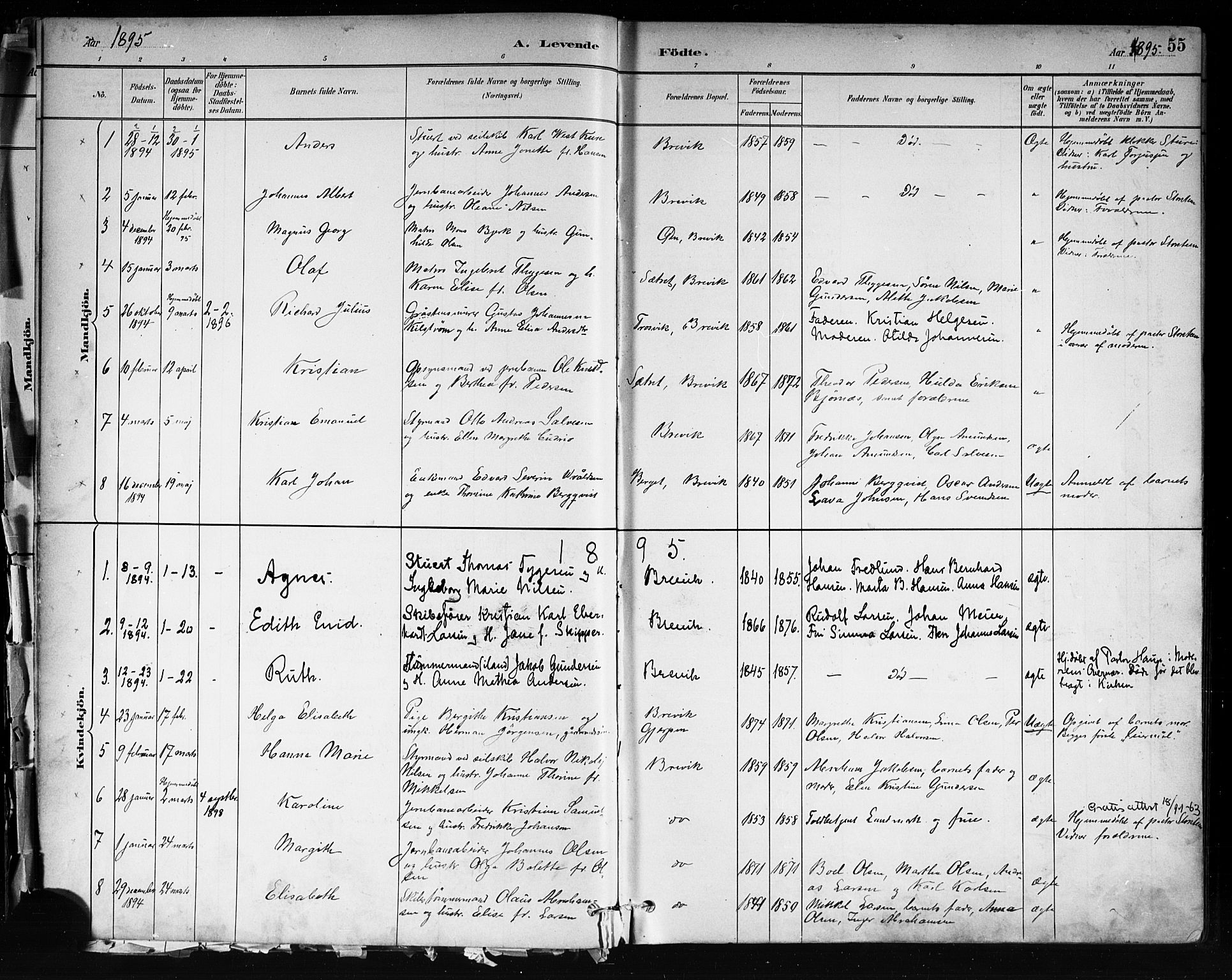 SAKO, Brevik kirkebøker, F/Fa/L0007: Ministerialbok nr. 7, 1882-1900, s. 55