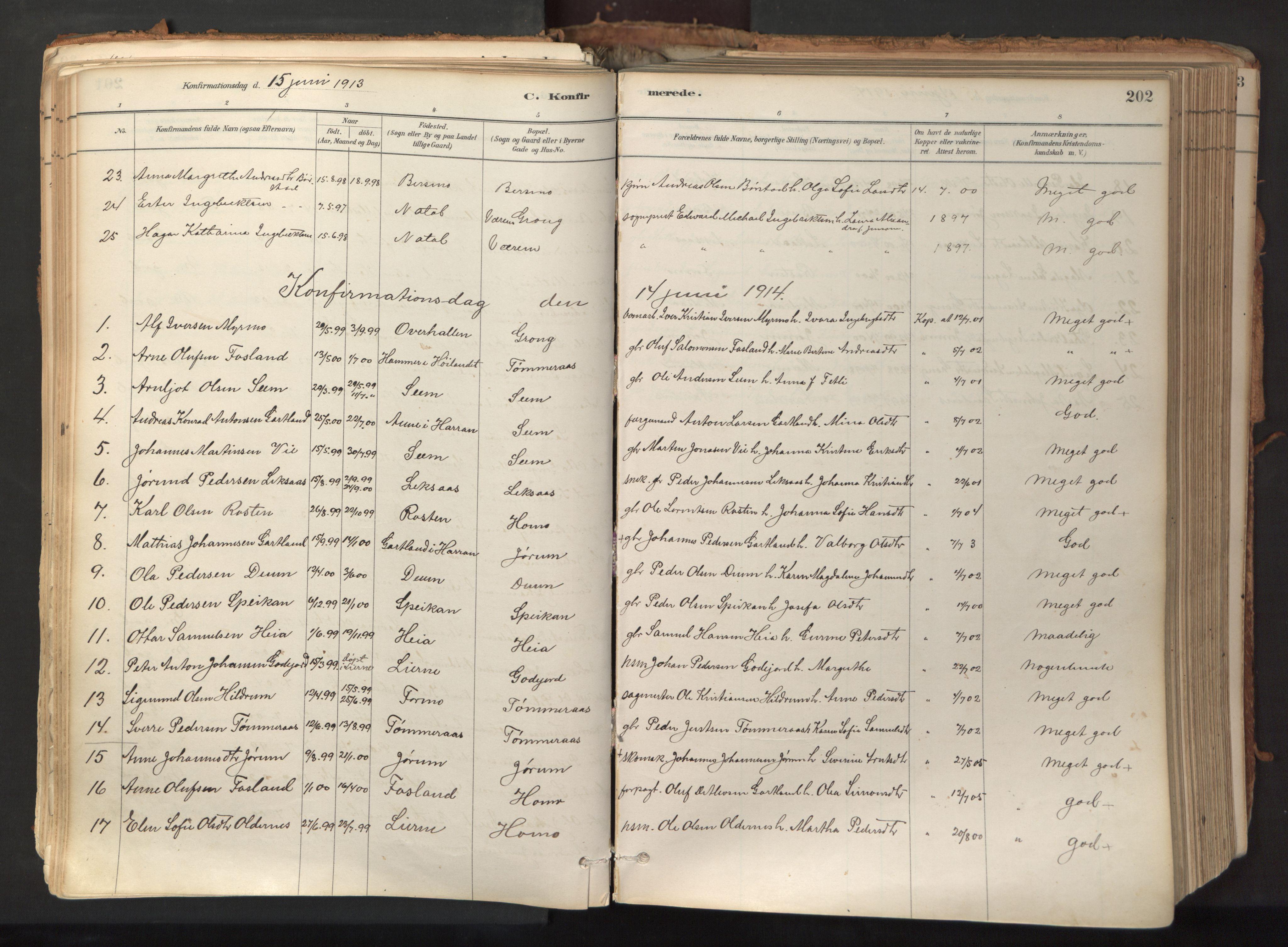 SAT, Ministerialprotokoller, klokkerbøker og fødselsregistre - Nord-Trøndelag, 758/L0519: Ministerialbok nr. 758A04, 1880-1926, s. 202