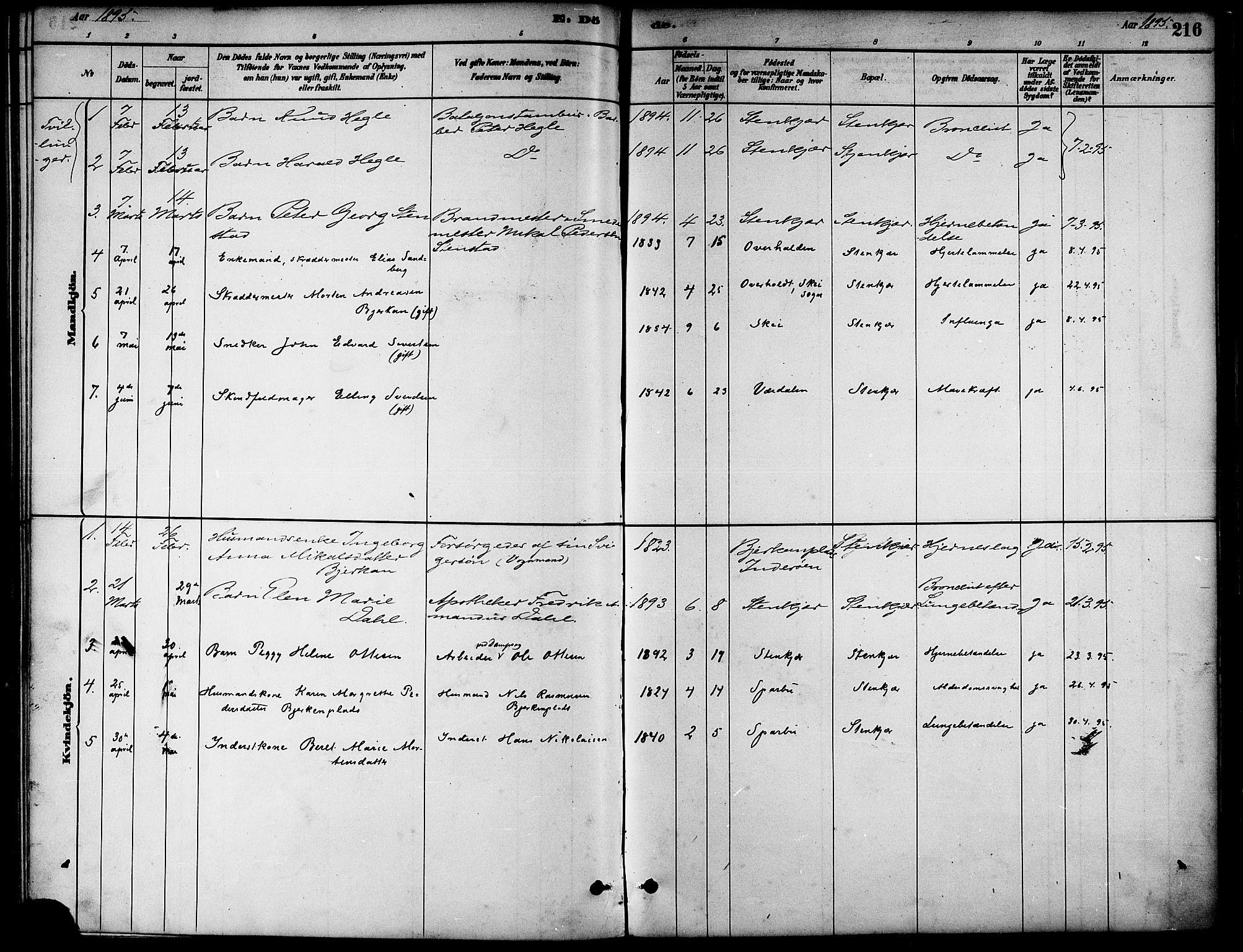 SAT, Ministerialprotokoller, klokkerbøker og fødselsregistre - Nord-Trøndelag, 739/L0371: Ministerialbok nr. 739A03, 1881-1895, s. 216