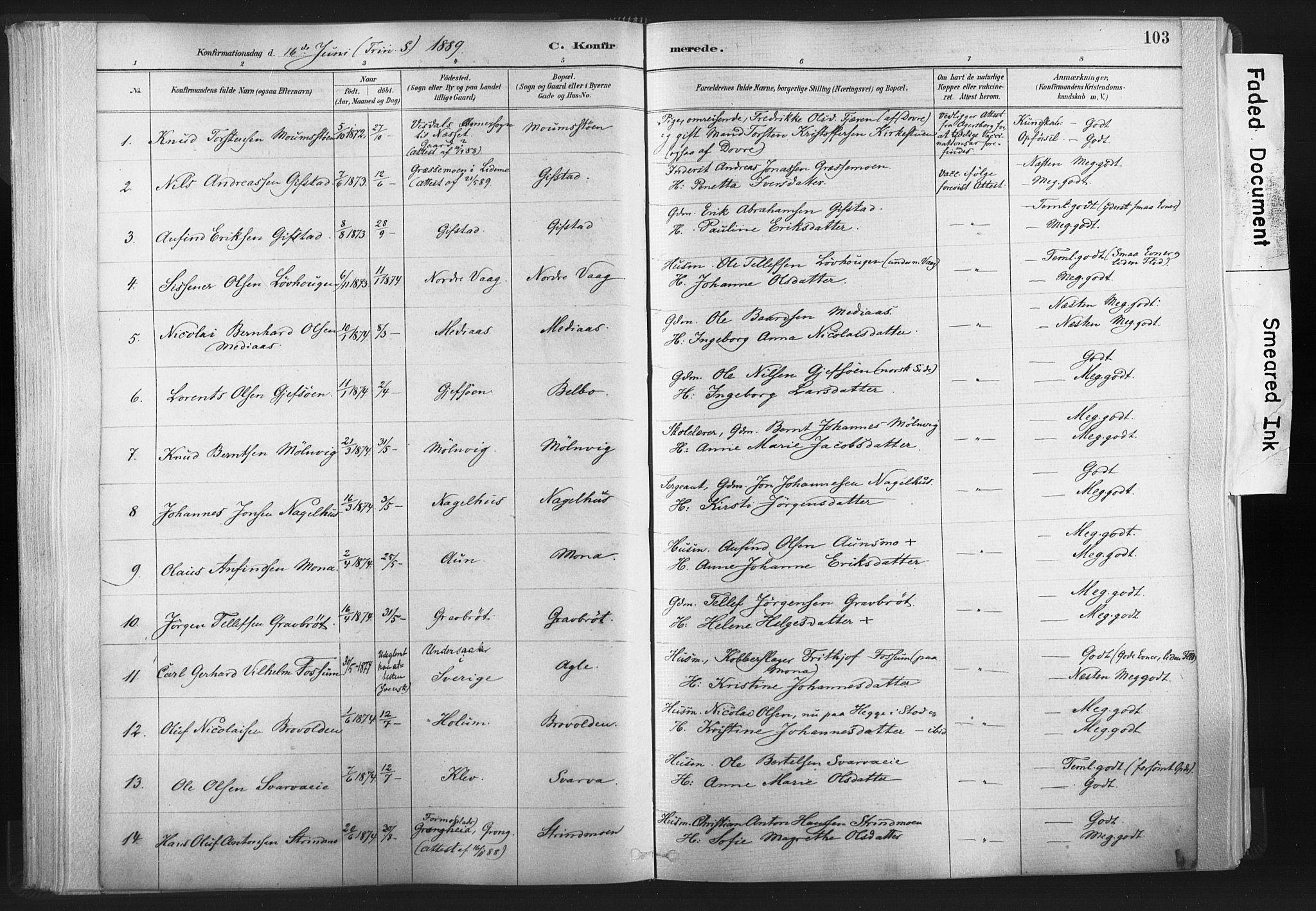 SAT, Ministerialprotokoller, klokkerbøker og fødselsregistre - Nord-Trøndelag, 749/L0474: Ministerialbok nr. 749A08, 1887-1903, s. 103