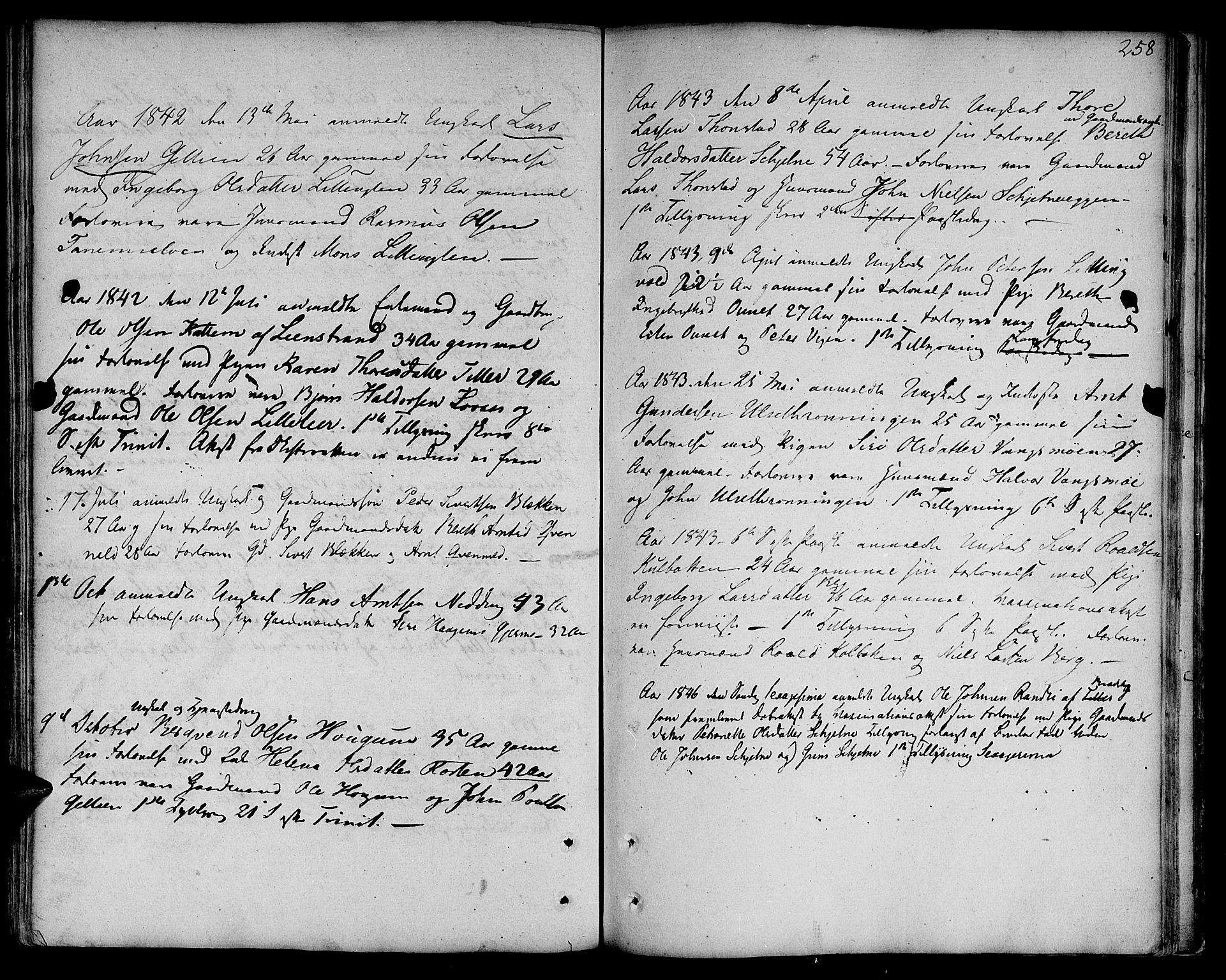 SAT, Ministerialprotokoller, klokkerbøker og fødselsregistre - Sør-Trøndelag, 618/L0438: Ministerialbok nr. 618A03, 1783-1815, s. 258