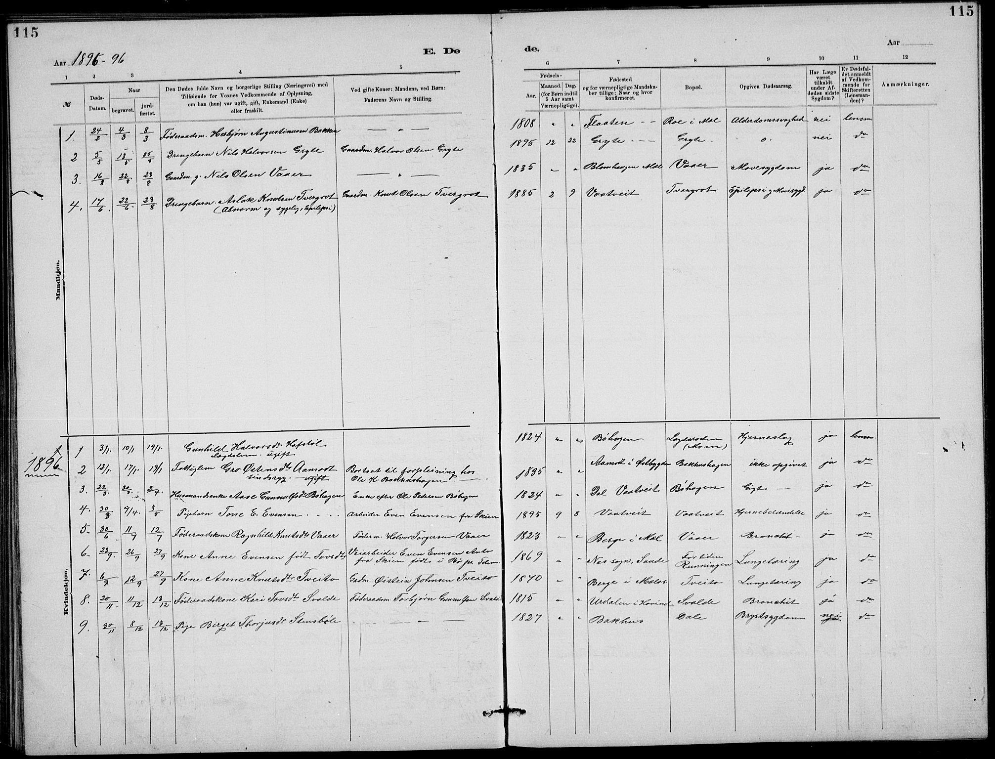 SAKO, Rjukan kirkebøker, G/Ga/L0001: Klokkerbok nr. 1, 1880-1914, s. 115