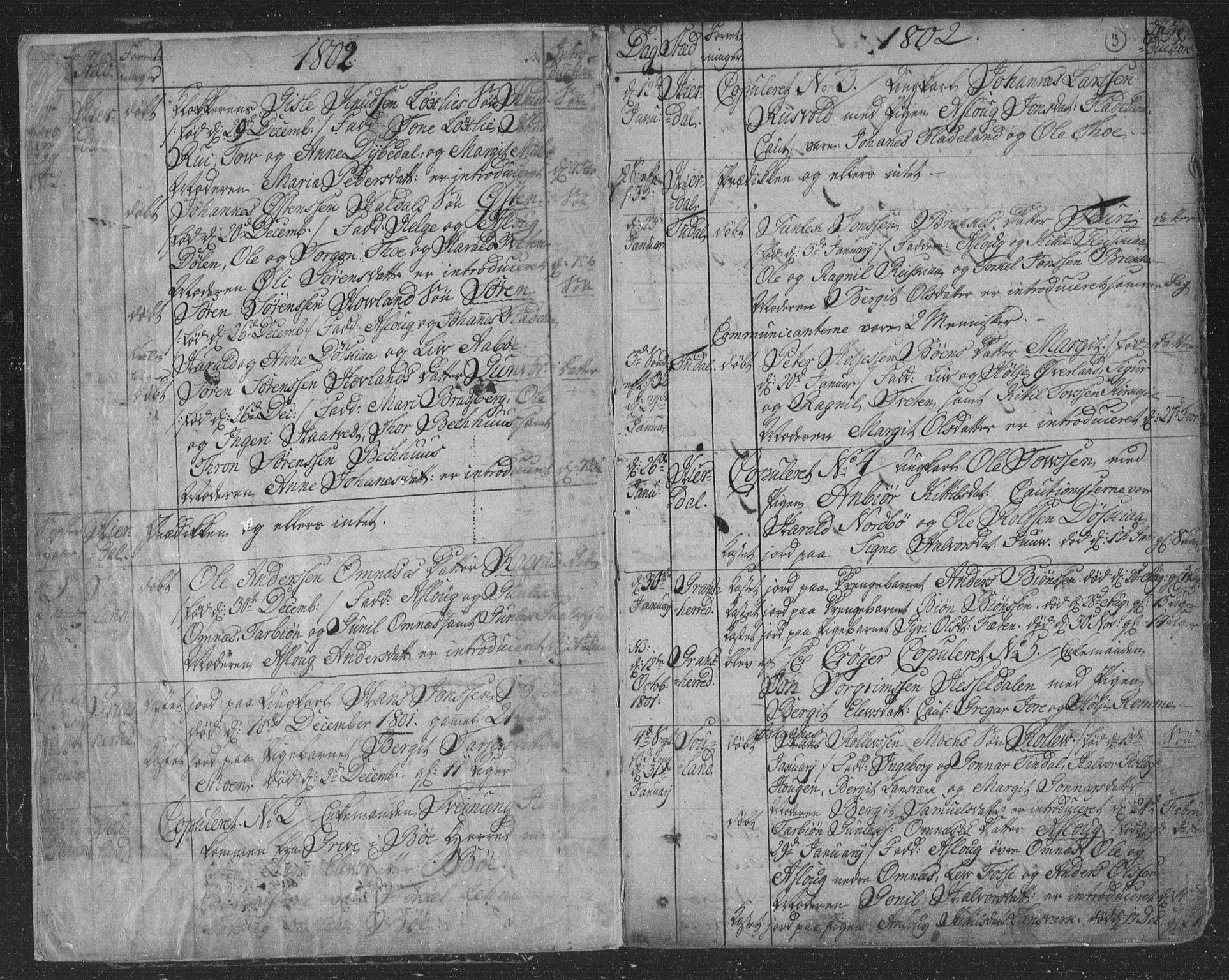SAKO, Hjartdal kirkebøker, F/Fa/L0006: Ministerialbok nr. I 6, 1801-1814, s. 3