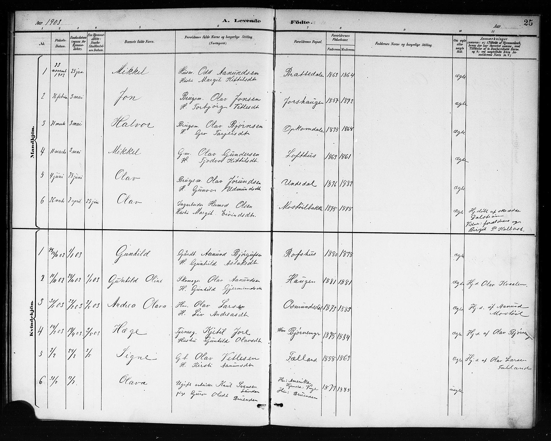 SAKO, Mo kirkebøker, G/Ga/L0002: Klokkerbok nr. I 2, 1892-1914, s. 25