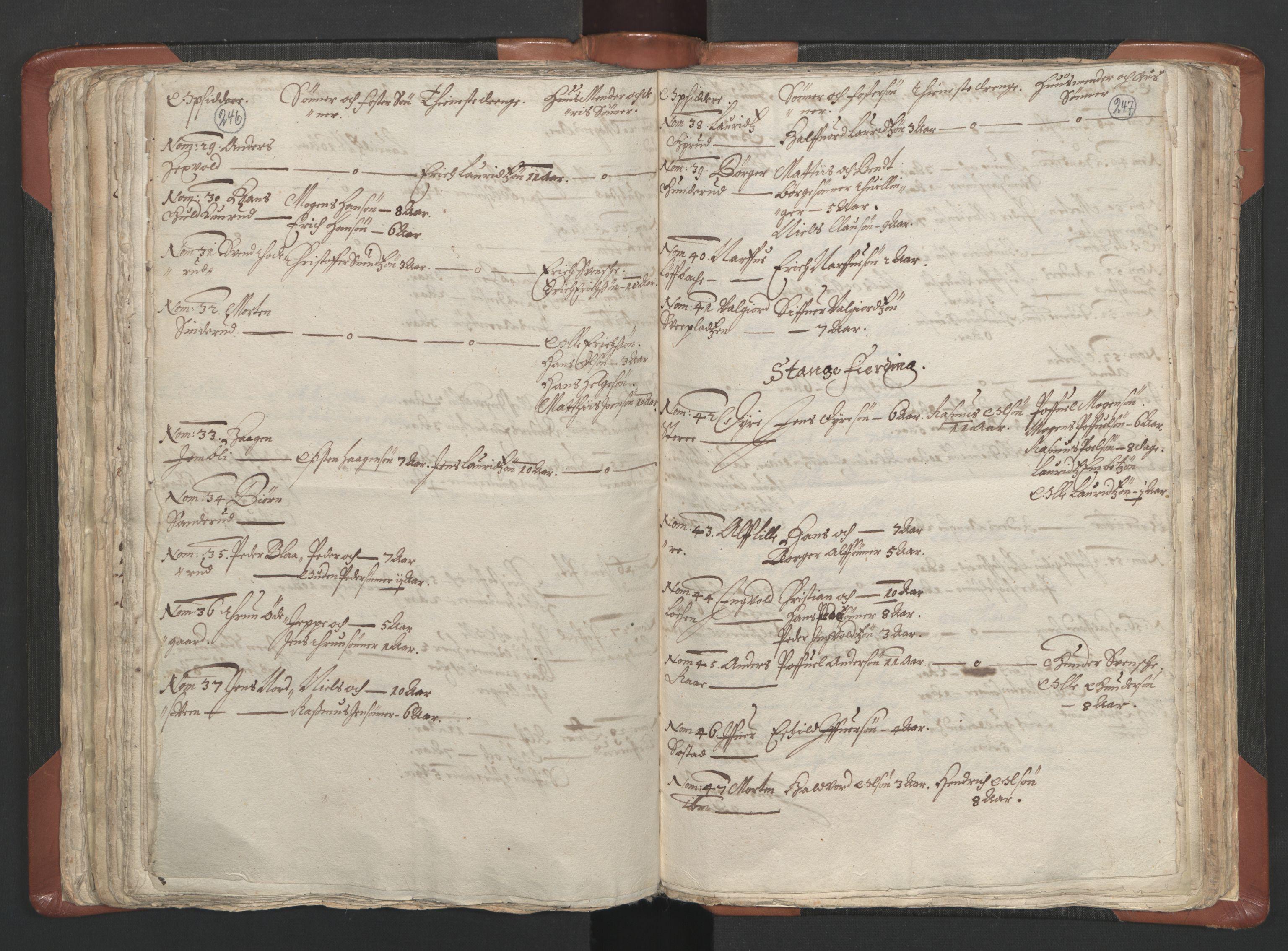 RA, Sogneprestenes manntall 1664-1666, nr. 5: Hedmark prosti, 1664-1666, s. 246-247