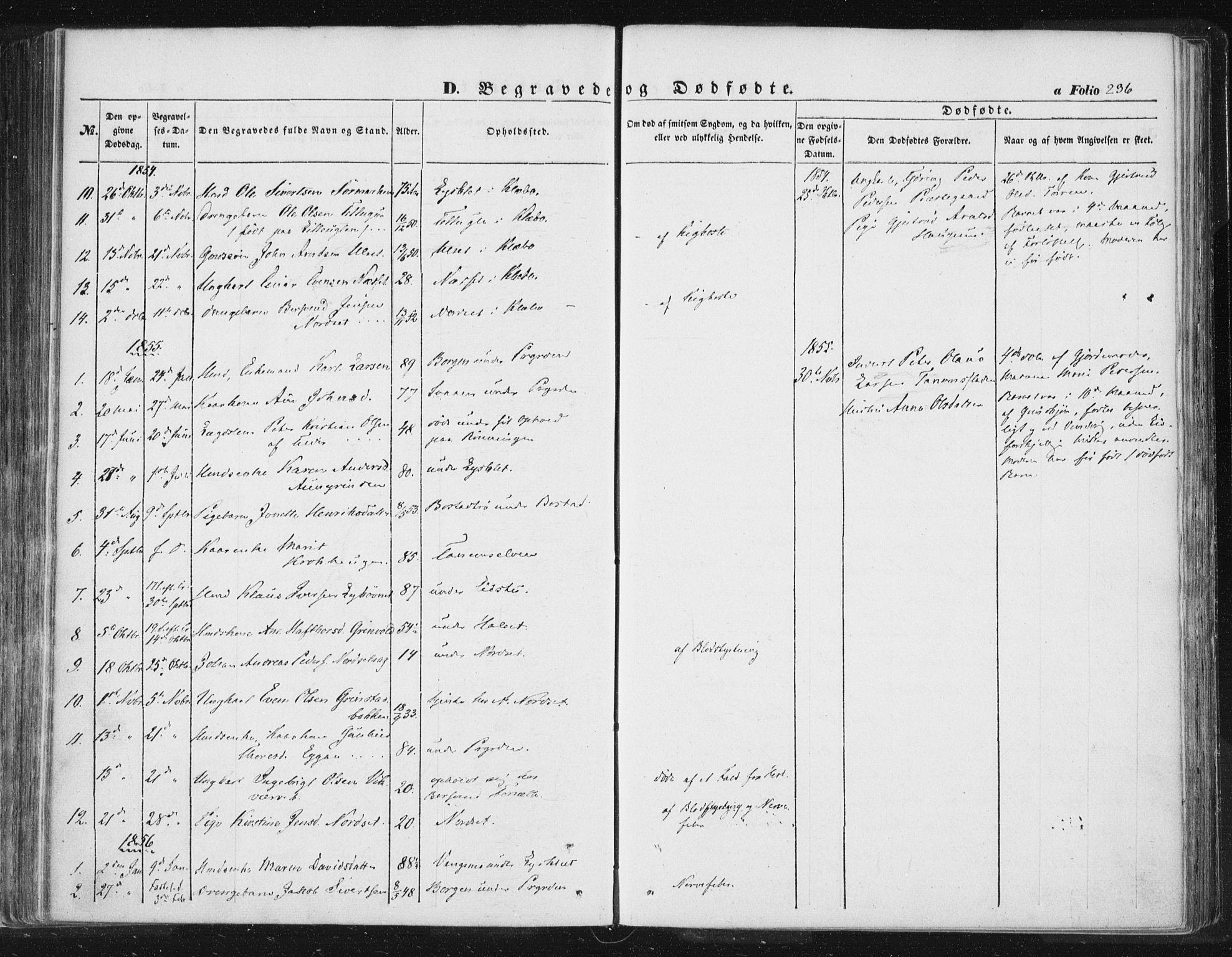SAT, Ministerialprotokoller, klokkerbøker og fødselsregistre - Sør-Trøndelag, 618/L0441: Ministerialbok nr. 618A05, 1843-1862, s. 236