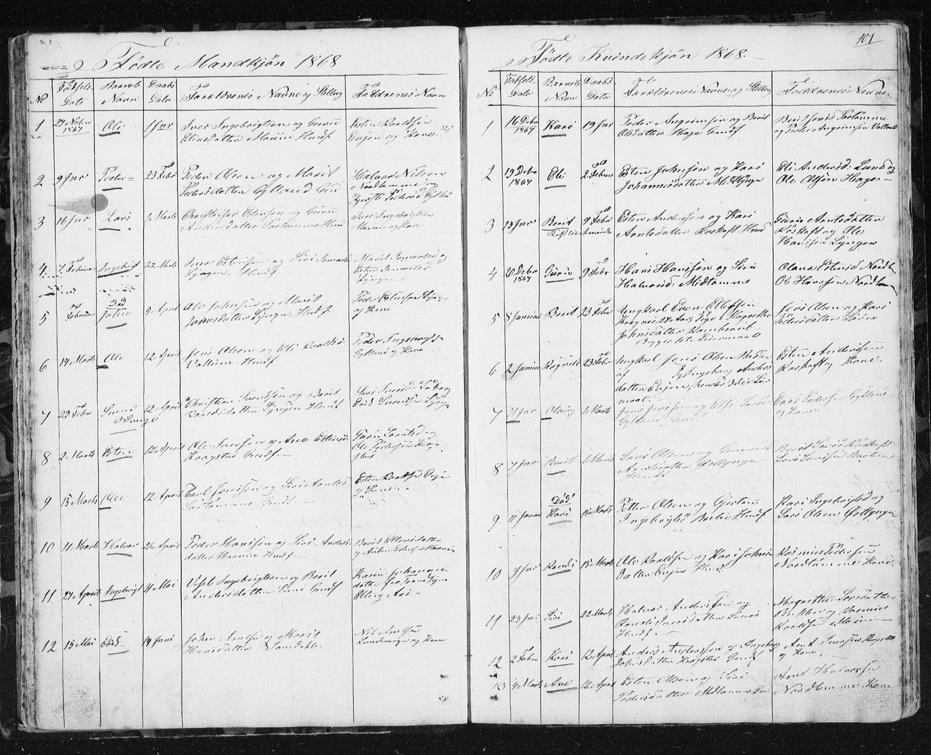 SAT, Ministerialprotokoller, klokkerbøker og fødselsregistre - Sør-Trøndelag, 692/L1110: Klokkerbok nr. 692C05, 1849-1889, s. 101