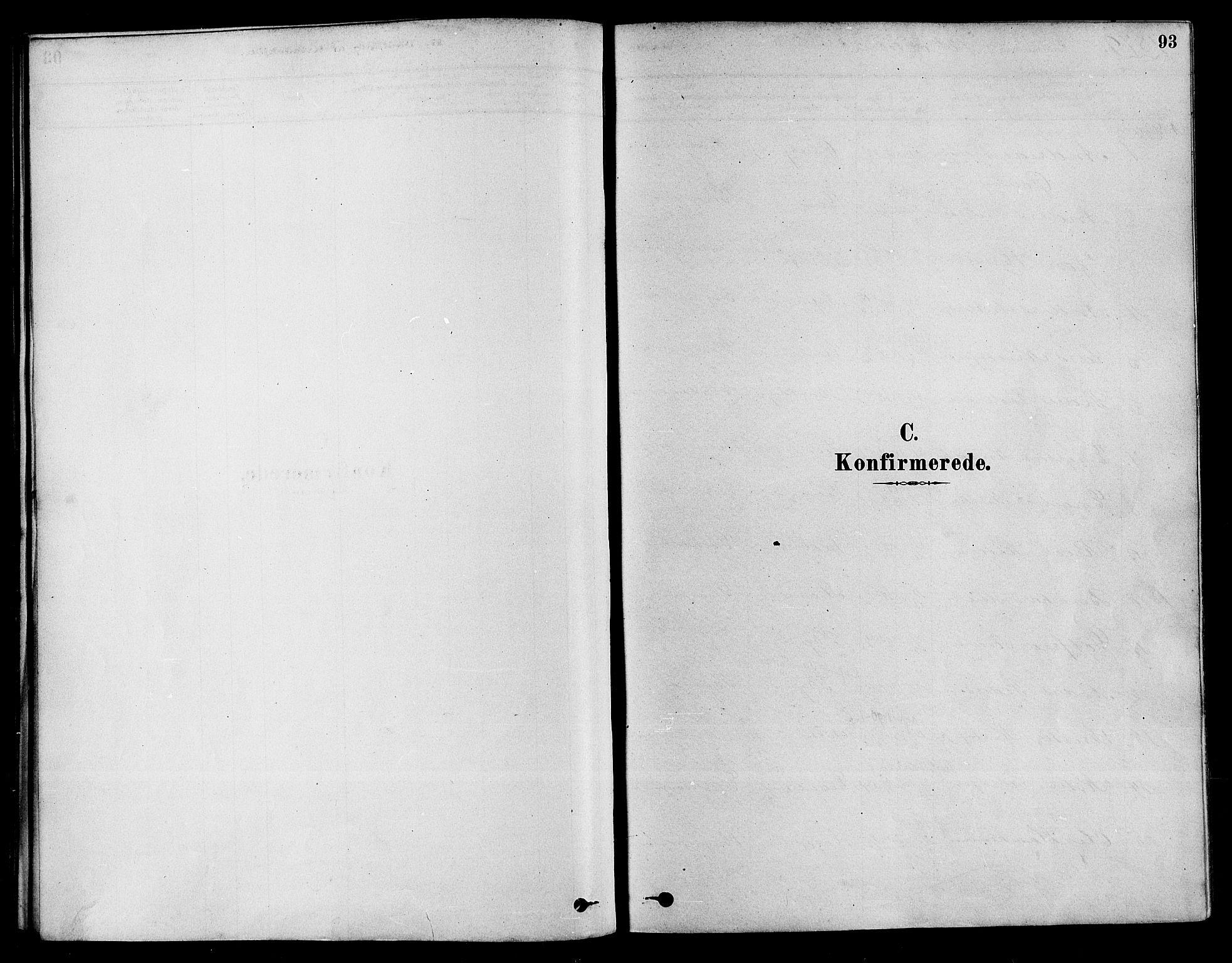 SAKO, Sigdal kirkebøker, F/Fa/L0011: Ministerialbok nr. I 11, 1879-1887, s. 93