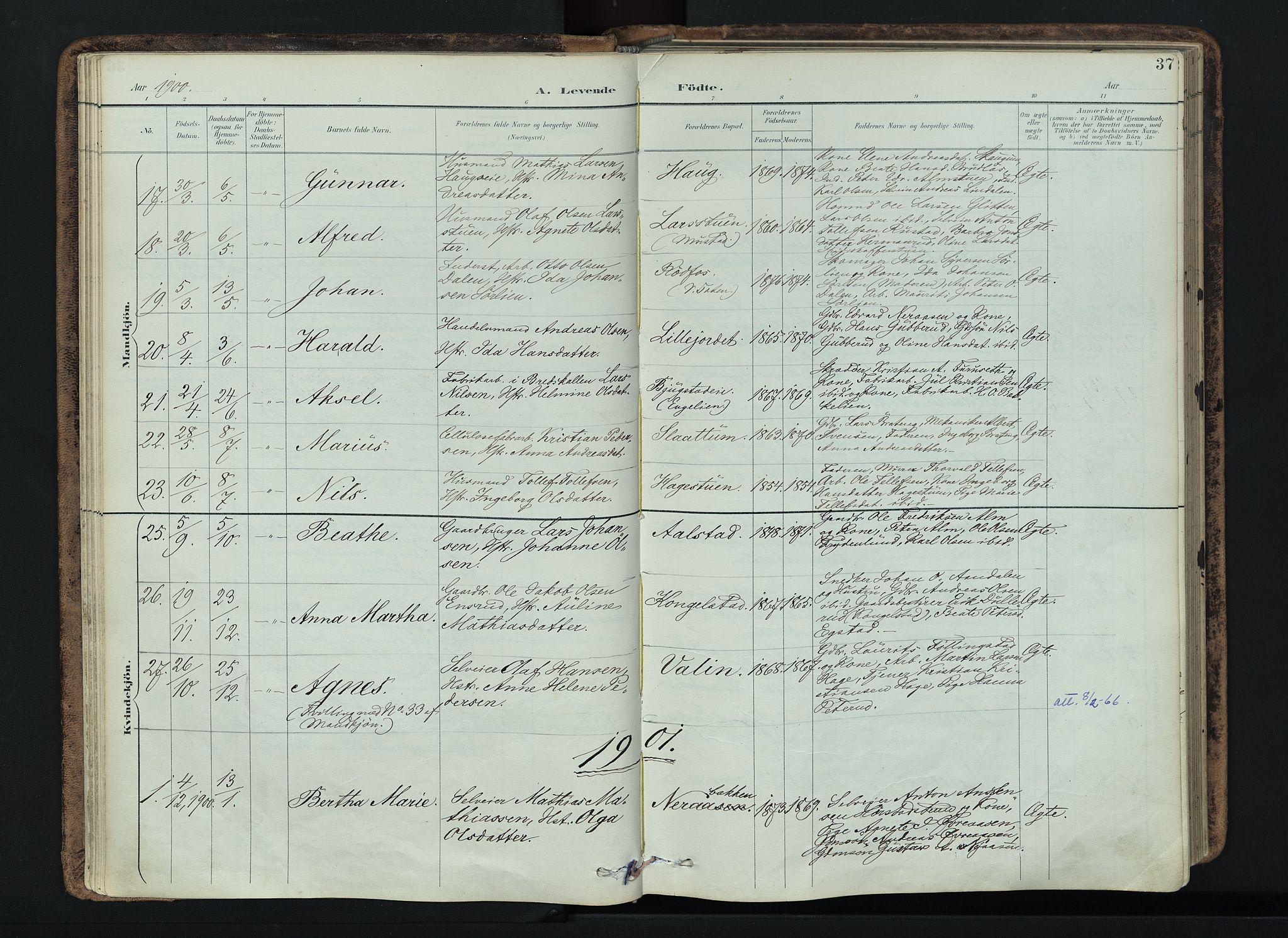 SAH, Vardal prestekontor, H/Ha/Haa/L0019: Ministerialbok nr. 19, 1893-1907, s. 37