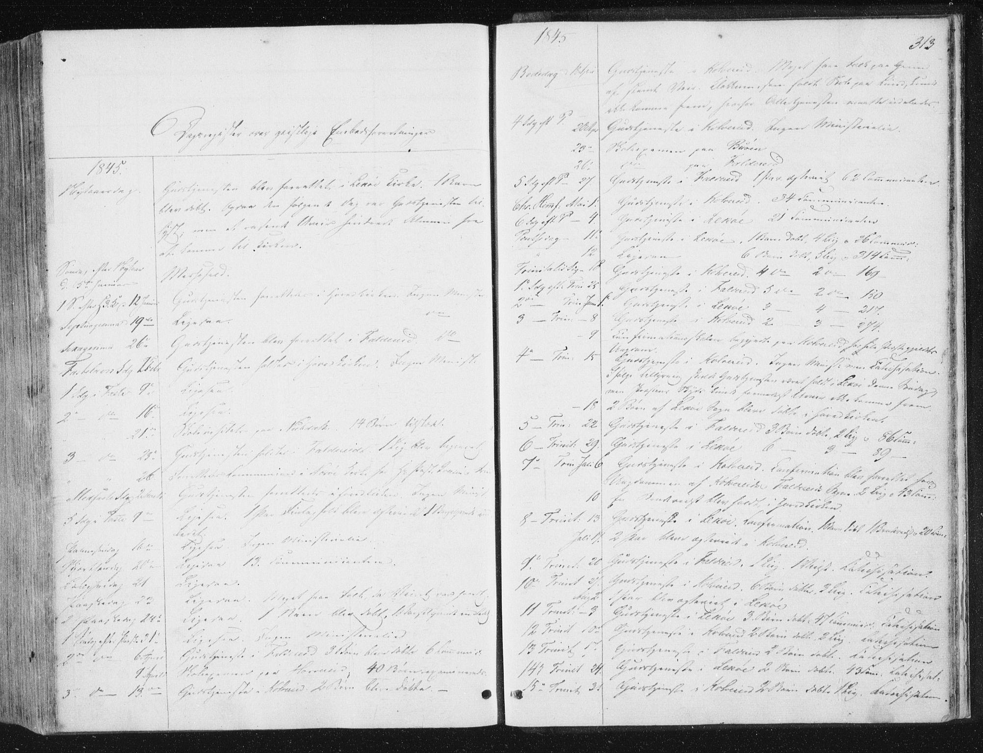 SAT, Ministerialprotokoller, klokkerbøker og fødselsregistre - Nord-Trøndelag, 780/L0640: Ministerialbok nr. 780A05, 1845-1856, s. 313